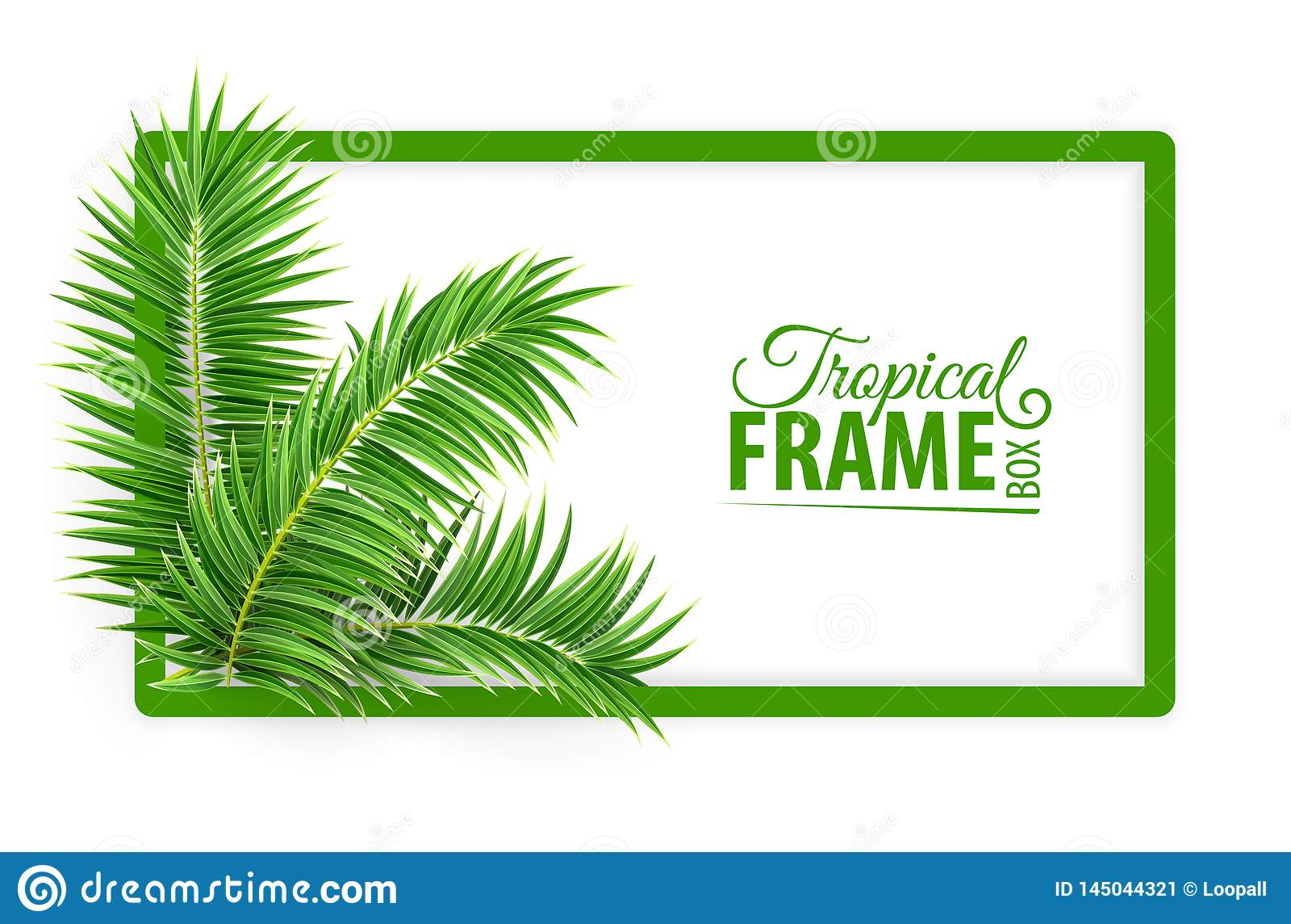 Tropisch bannerkader Ontwerplay-out Groene palmbladen Vector illustratie