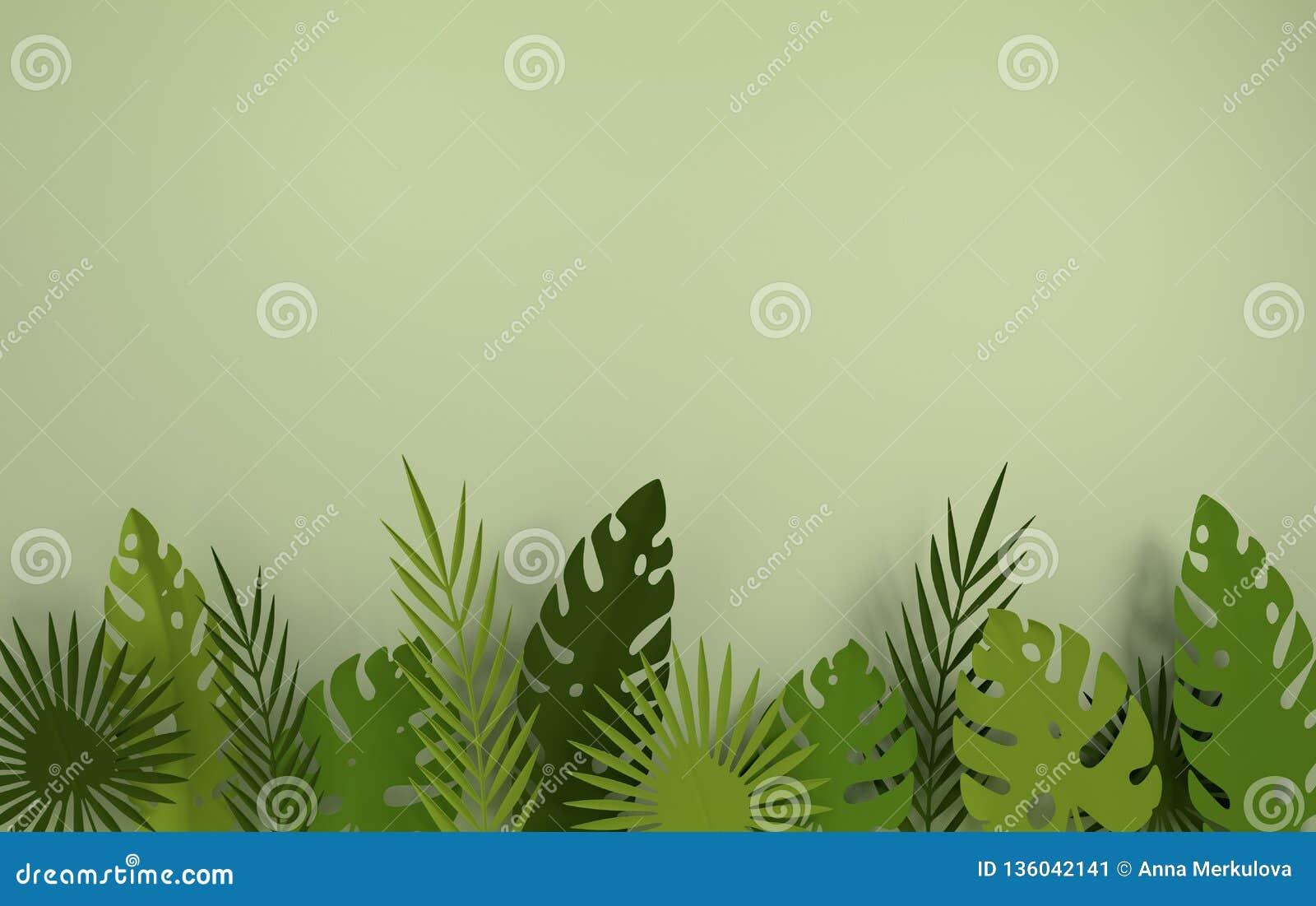 Tropisch document palmbladenkader De zomer tropisch groen blad Gebladerte van de origami het exotische Hawaiiaanse wildernis, zom