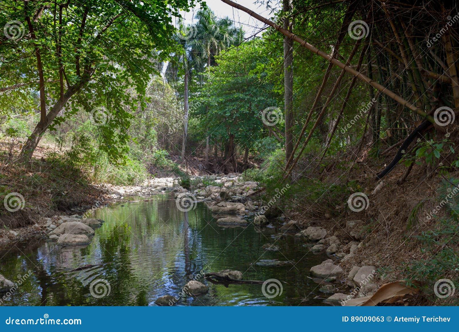 Tropisch Eiland reis