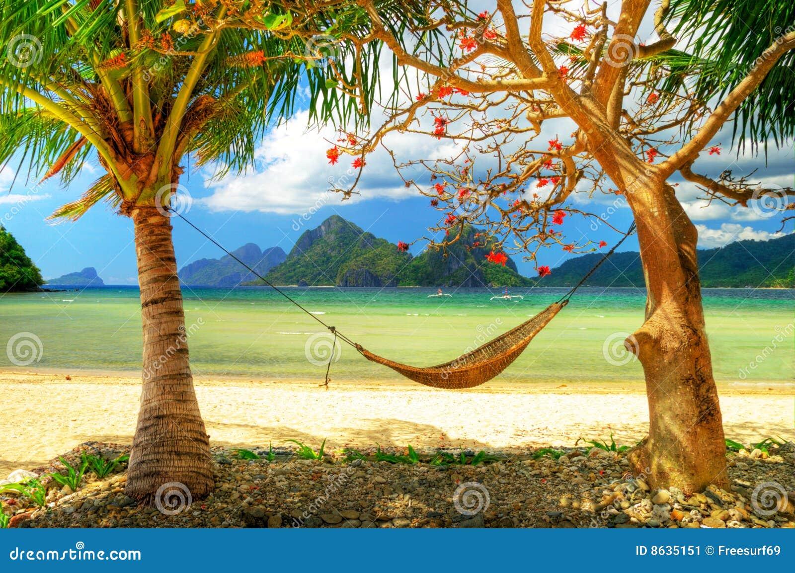 Tropisch entspannen Sie sich