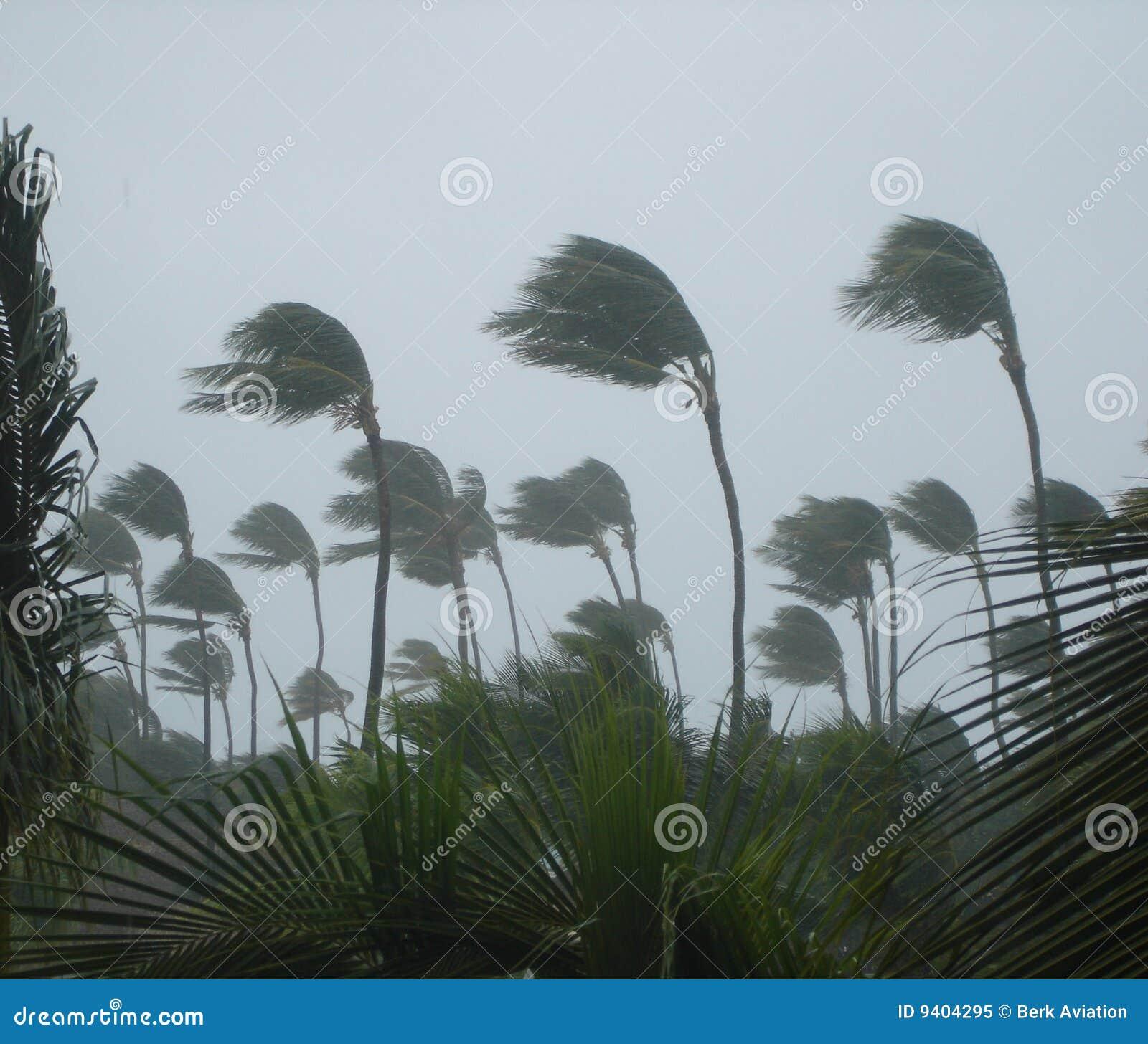 Tropisch onweer
