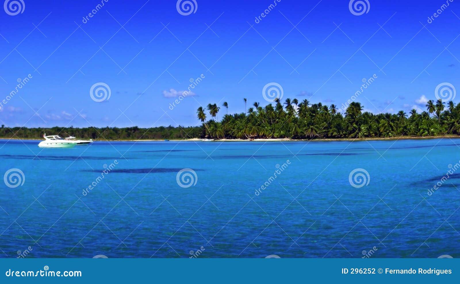 Tropisch strand-sommige korrel