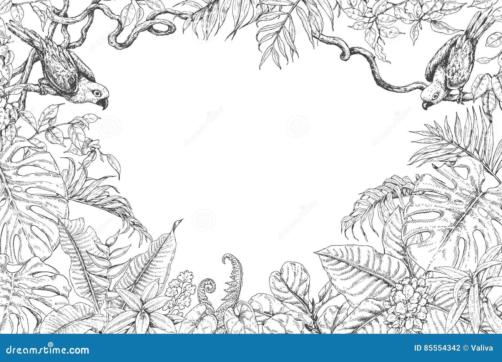 Tropische Betriebs-und Vogel-Rahmen