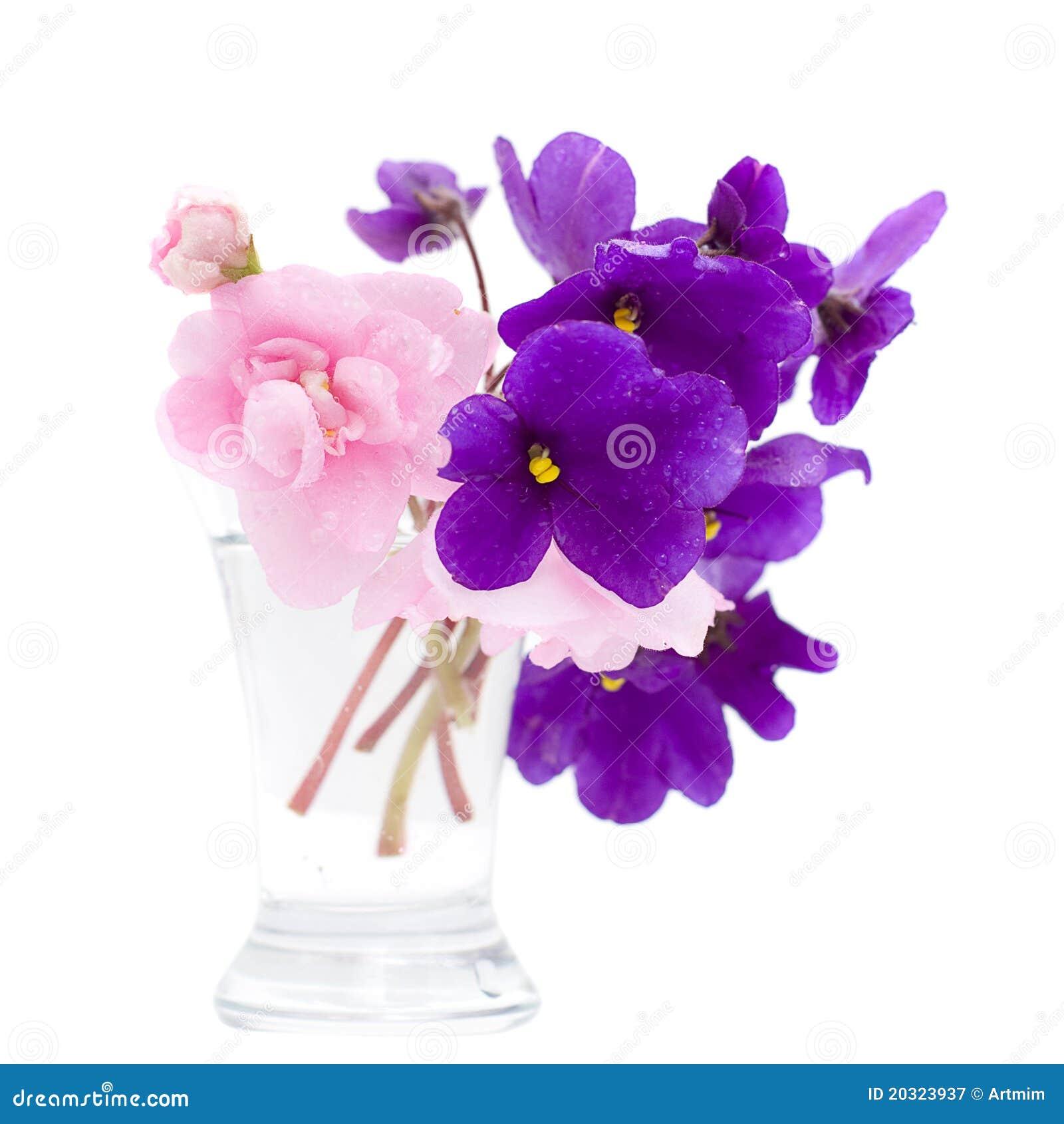 tropische blumen im vase stockbild bild von hintergrund 20323937. Black Bedroom Furniture Sets. Home Design Ideas