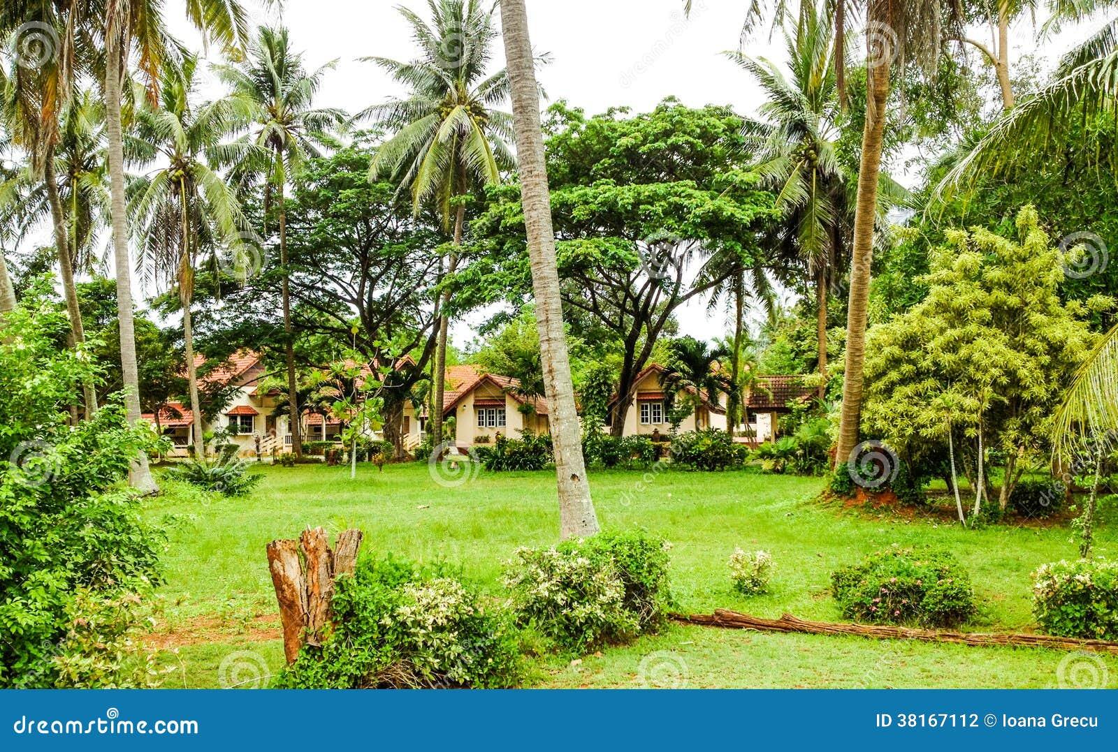 Tropische bungalowwen