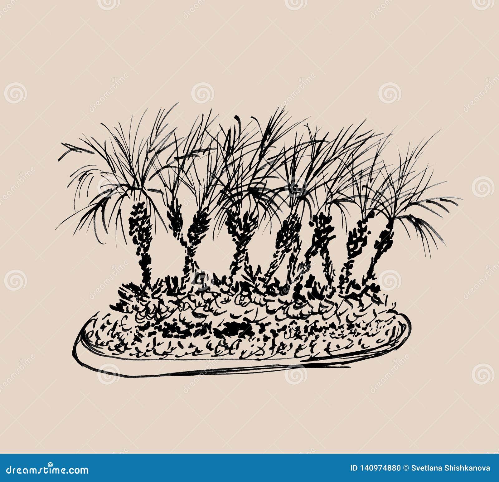Tropische die palmen op lichte beige achtergrond worden geïsoleerd Illustratie van kokospalmengroep Zwarte silhouetten Hand getro