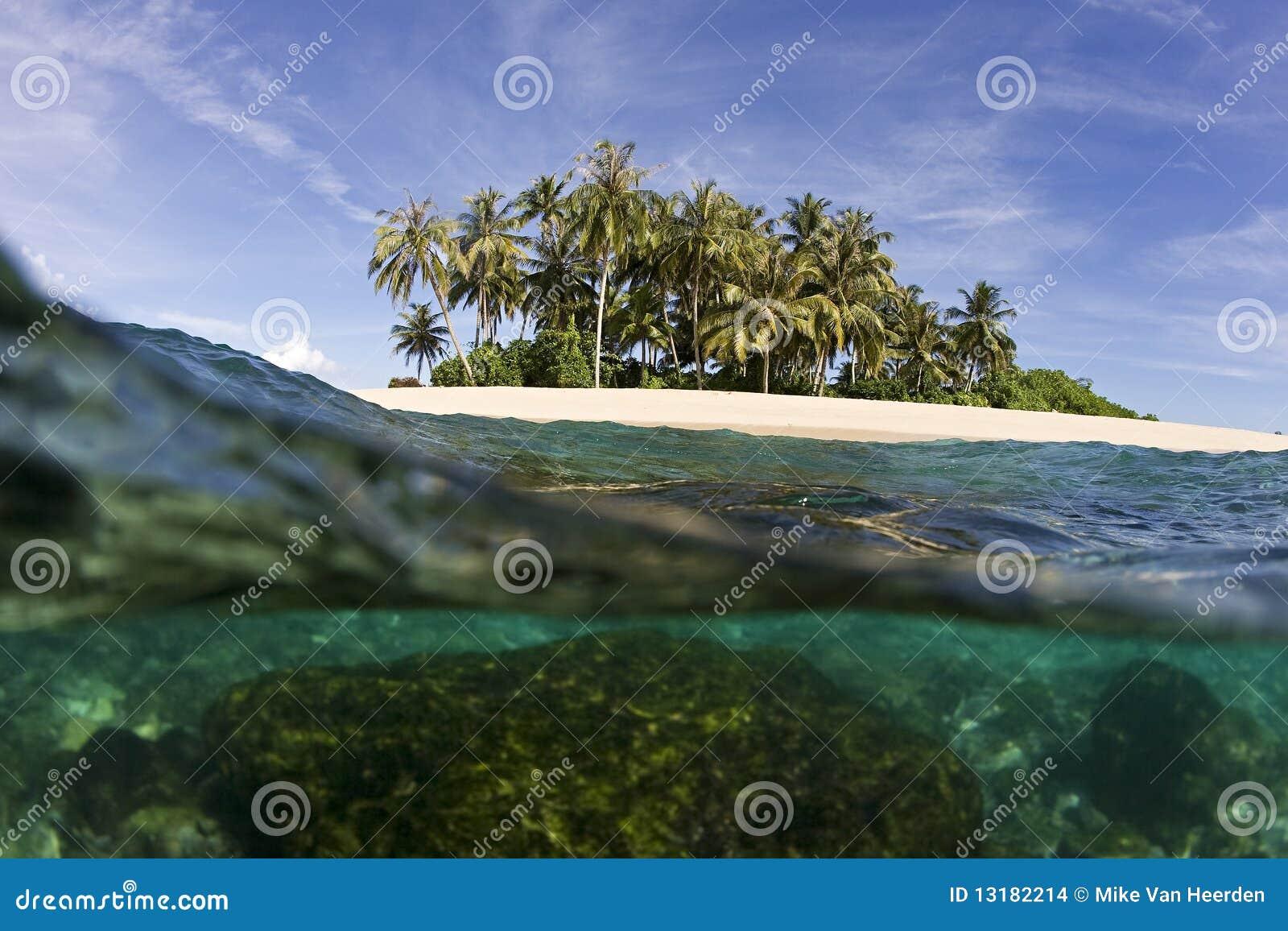 Tropische eiland en oceaan