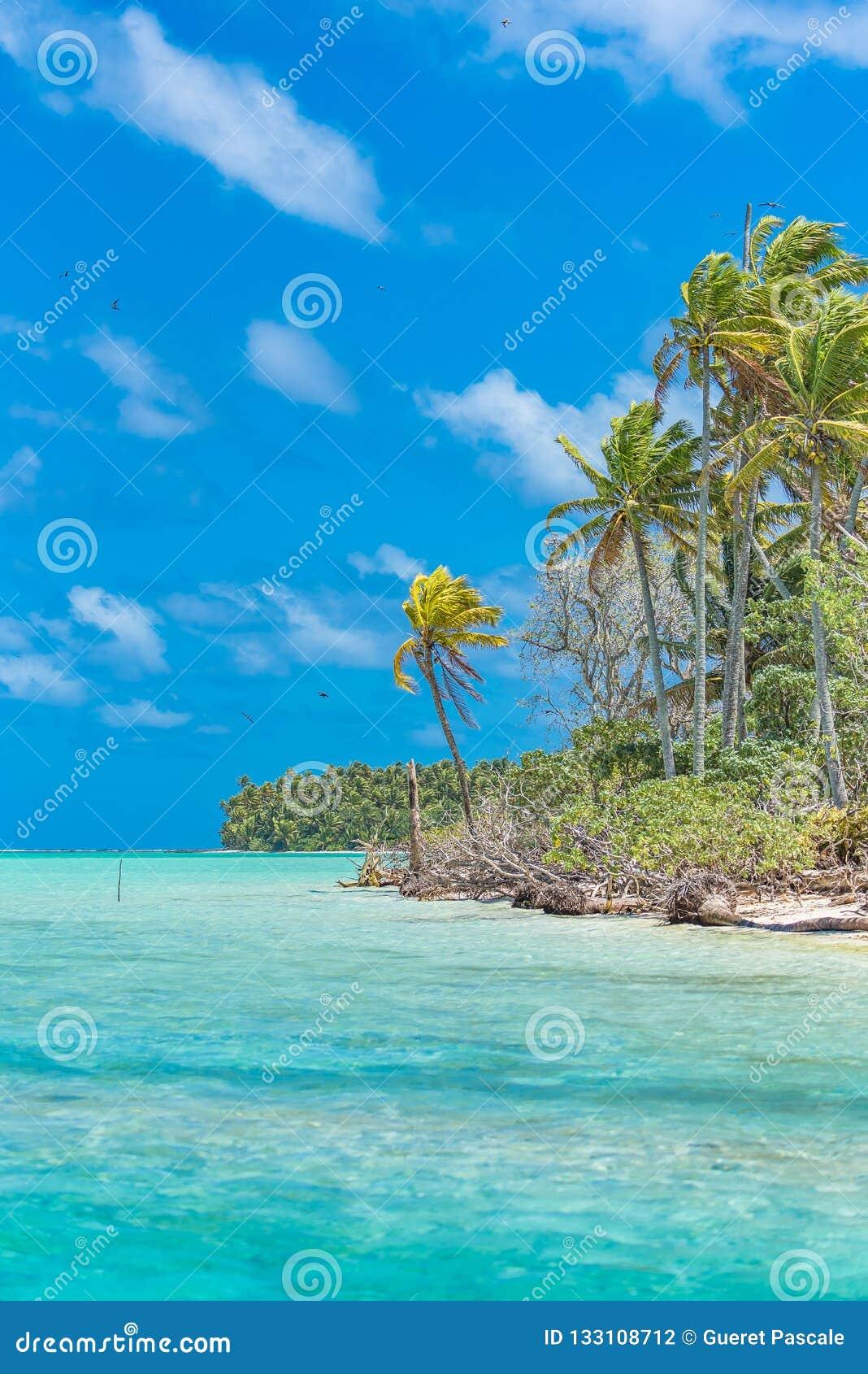 Tropische Lagune, im Französisch-Polynesien