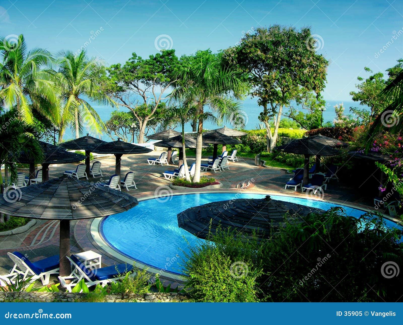 Tropische Pool