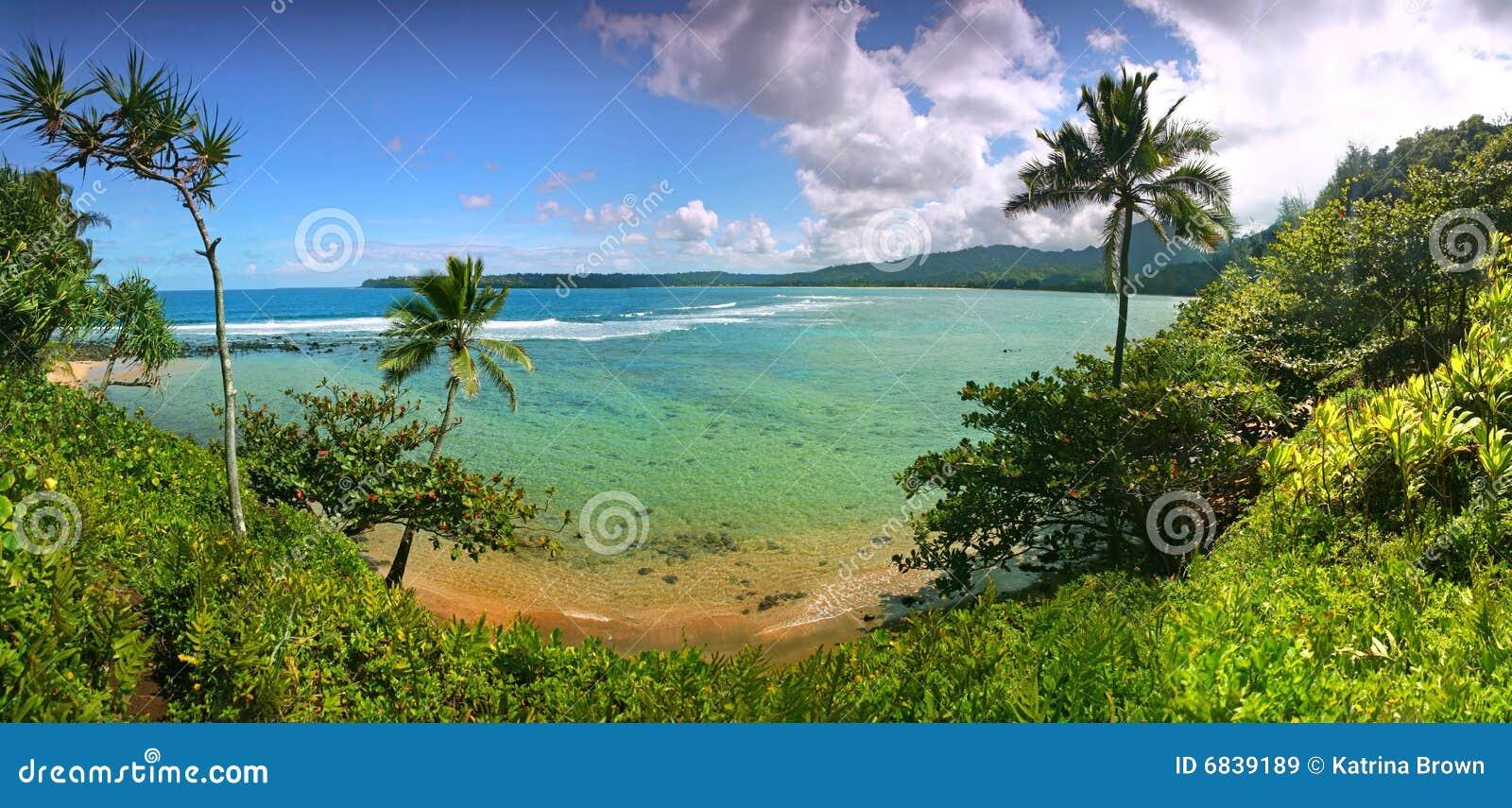 Tropische Rücksortierung-Ansicht in Kauai Hawaii
