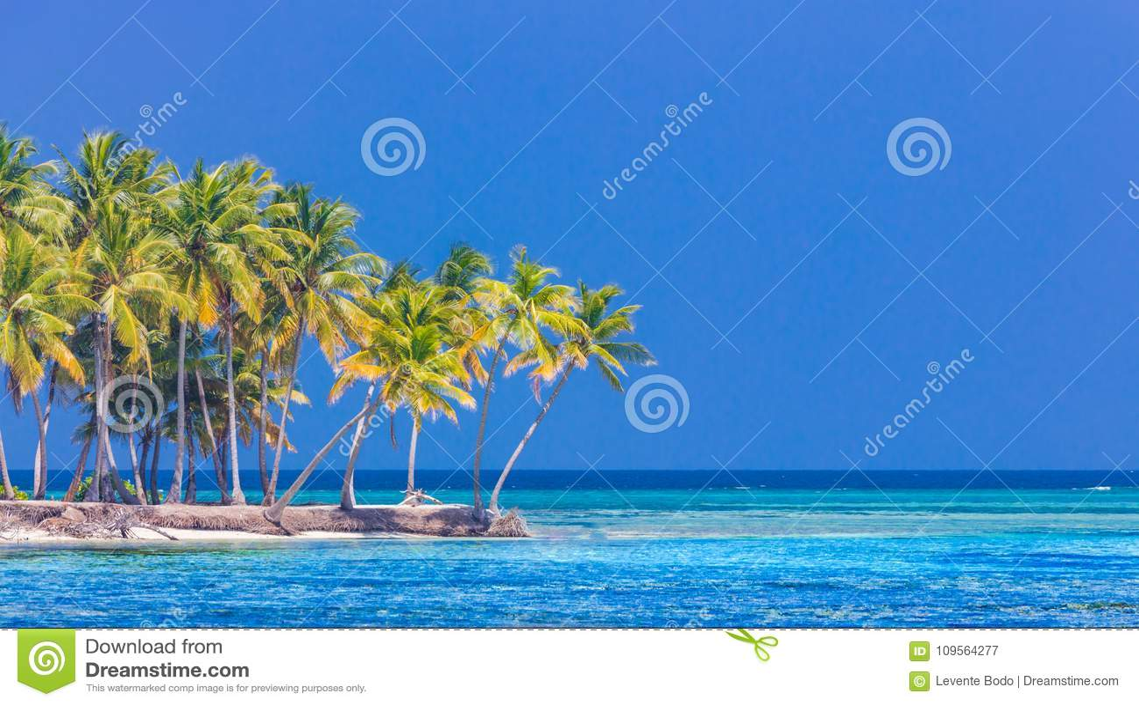 Tropische Strandfahne und Sommerlandschaftshintergrund Ferien und Feiertag mit Palmen und Tropeninsel setzen auf den Strand