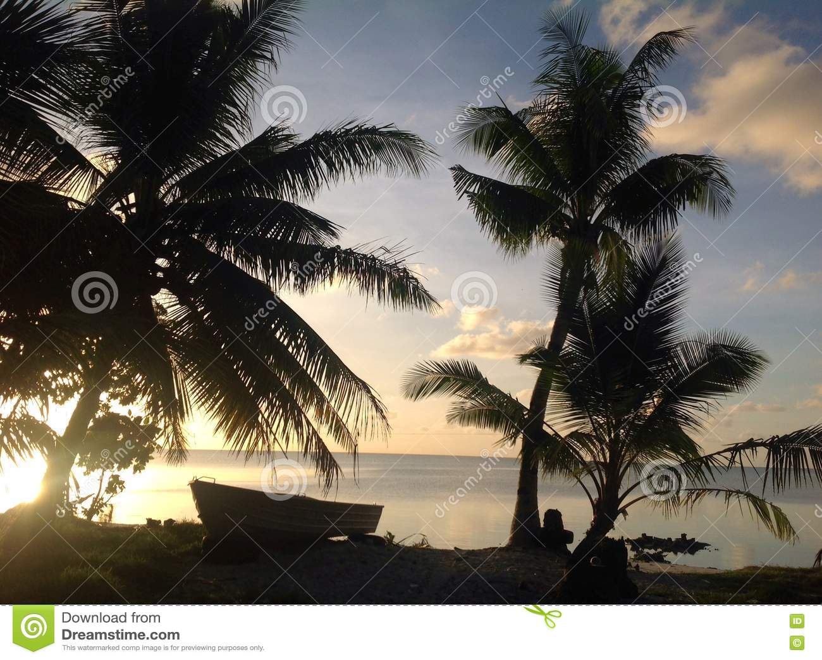 Tropische Szene in Fidschi mit Palmen im Sonnenuntergang durch den Ozean