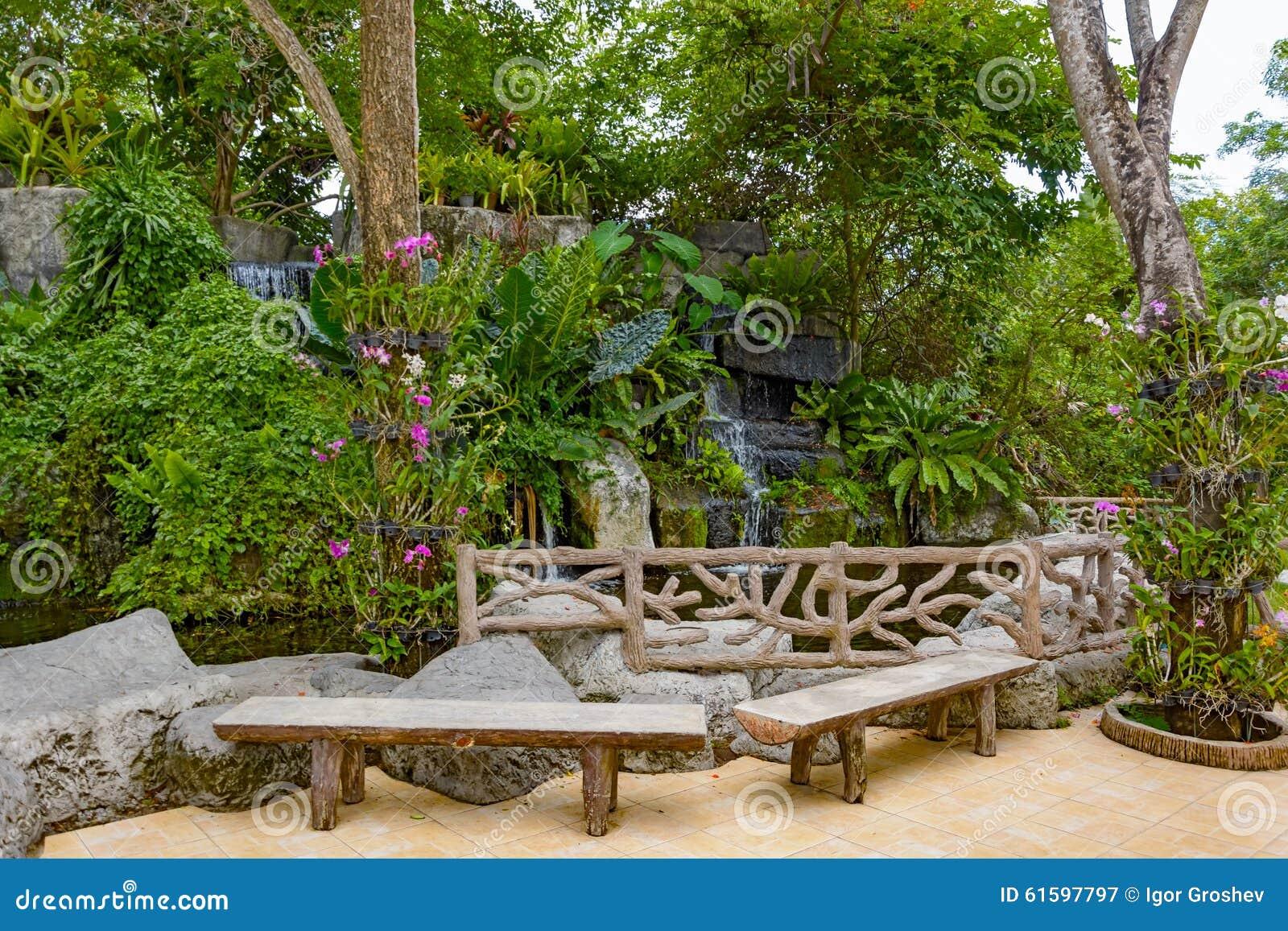 Tropische tuin vijver en installaties stock afbeelding for Tuin en vijver