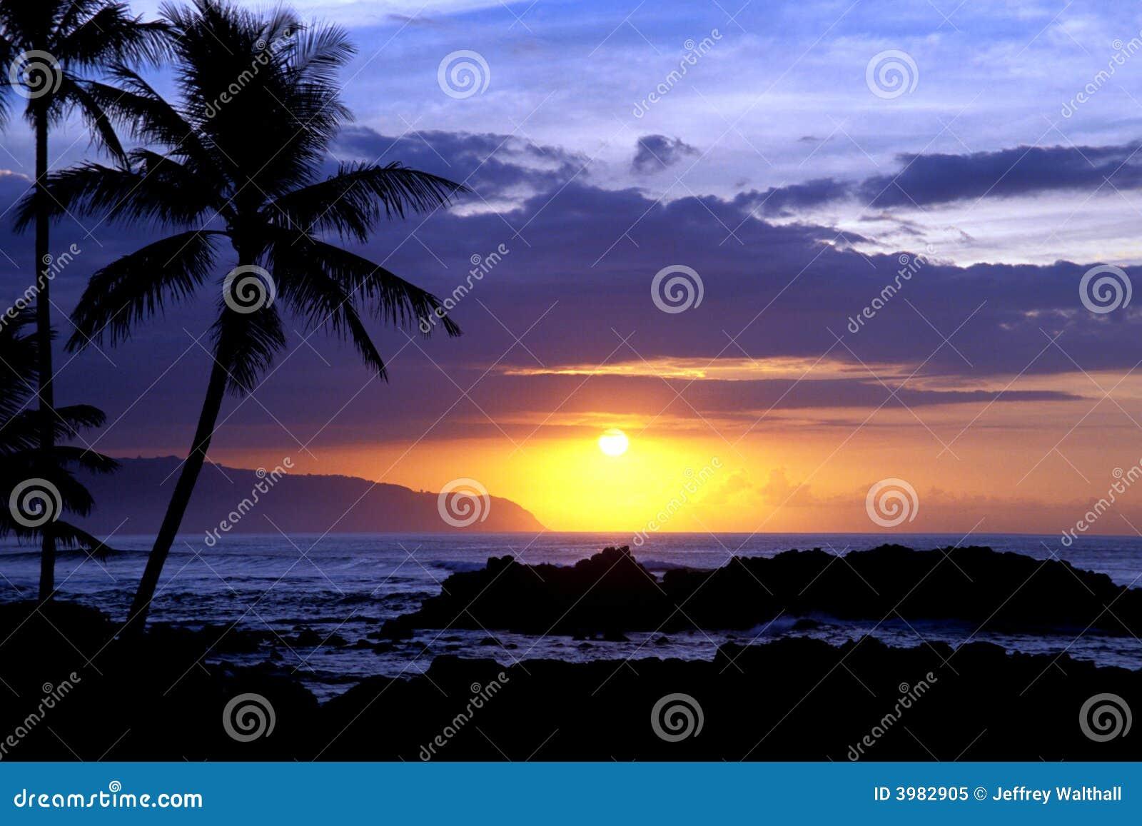 Tropische Zonsondergang 1.3