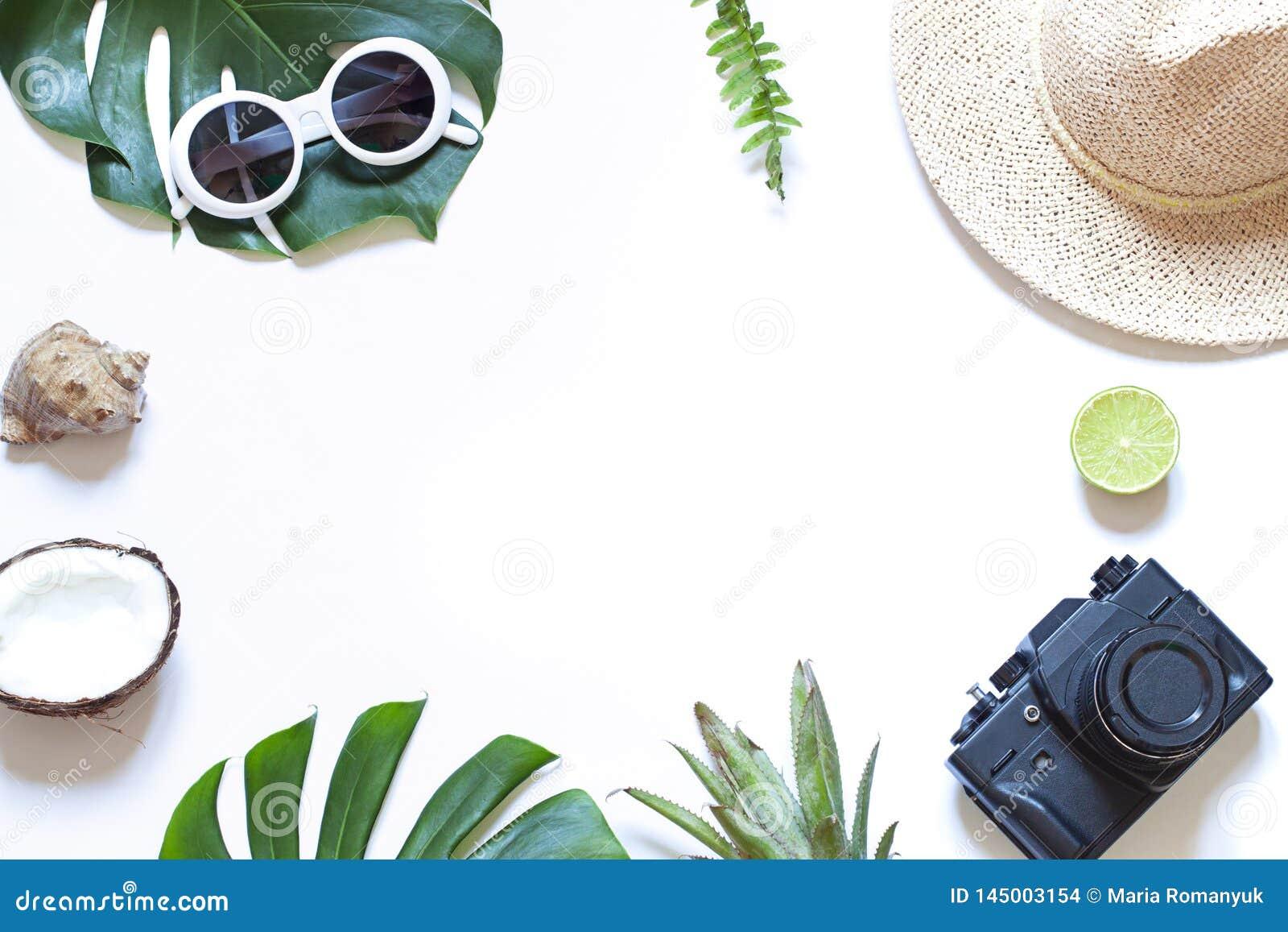 Tropischer Rahmen der Sommerreise mit einer Fotokamera auf dem wei?en Hintergrund Flache Lage des Ferienkonzeptes