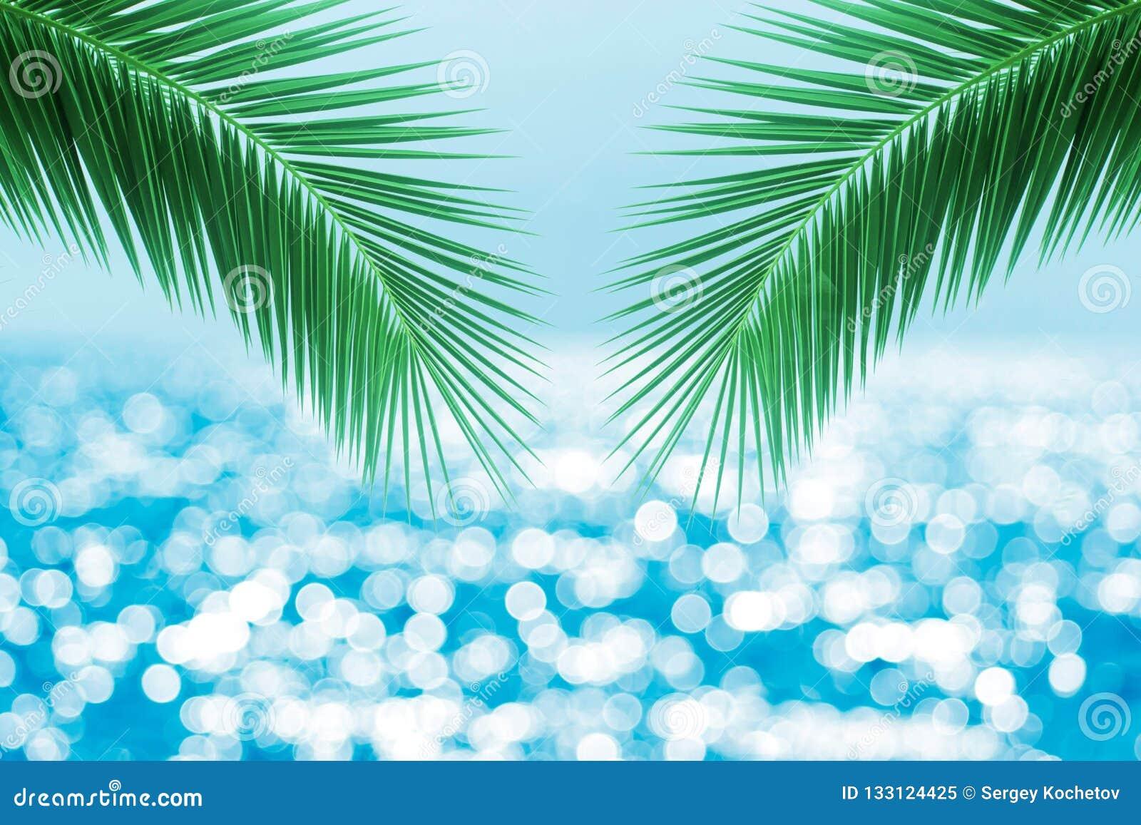 Tropischer Strand mit Seestern auf Sand, Sommerferienhintergrund Reisen Sie und setzen Sie Ferien, freien Raum für Text auf den S