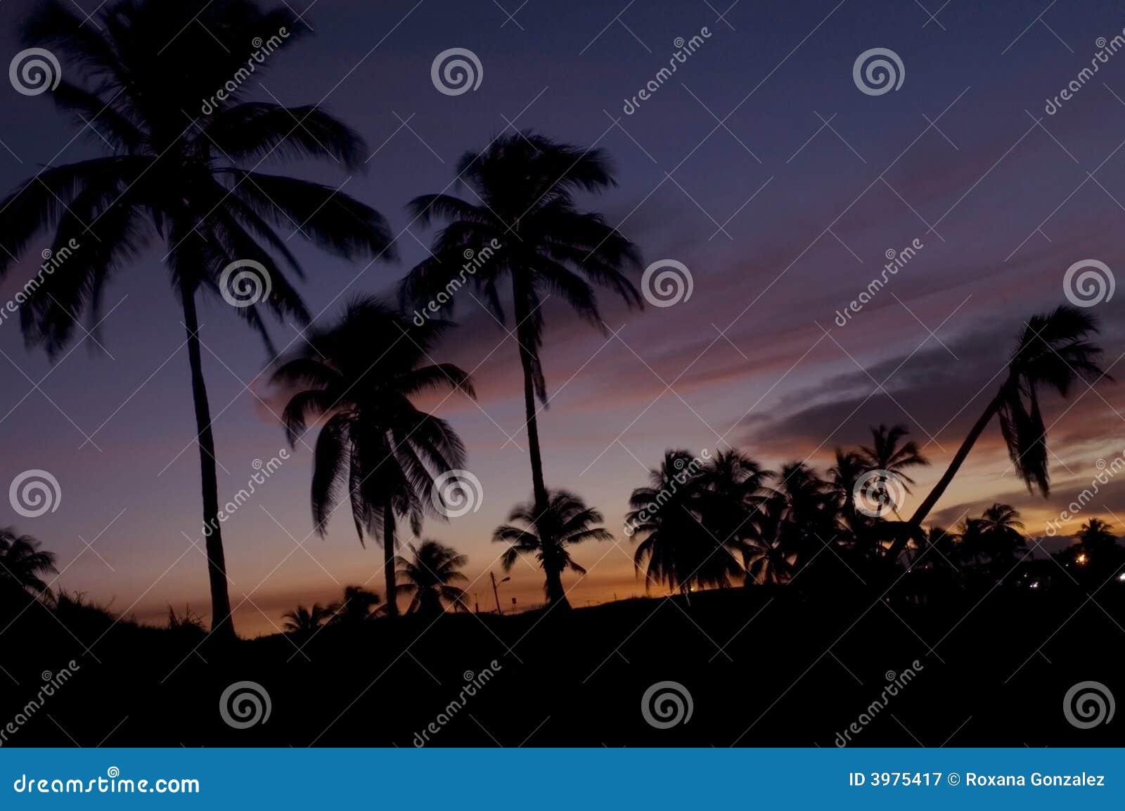 Tropisches Paradies am Sonnenuntergang