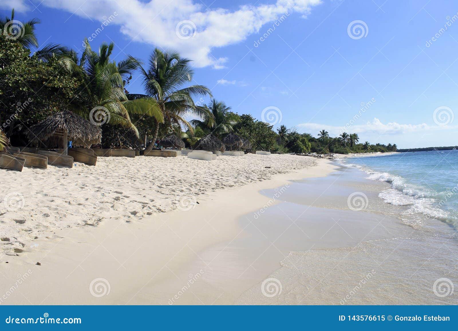 Tropisk östrand med vit sand