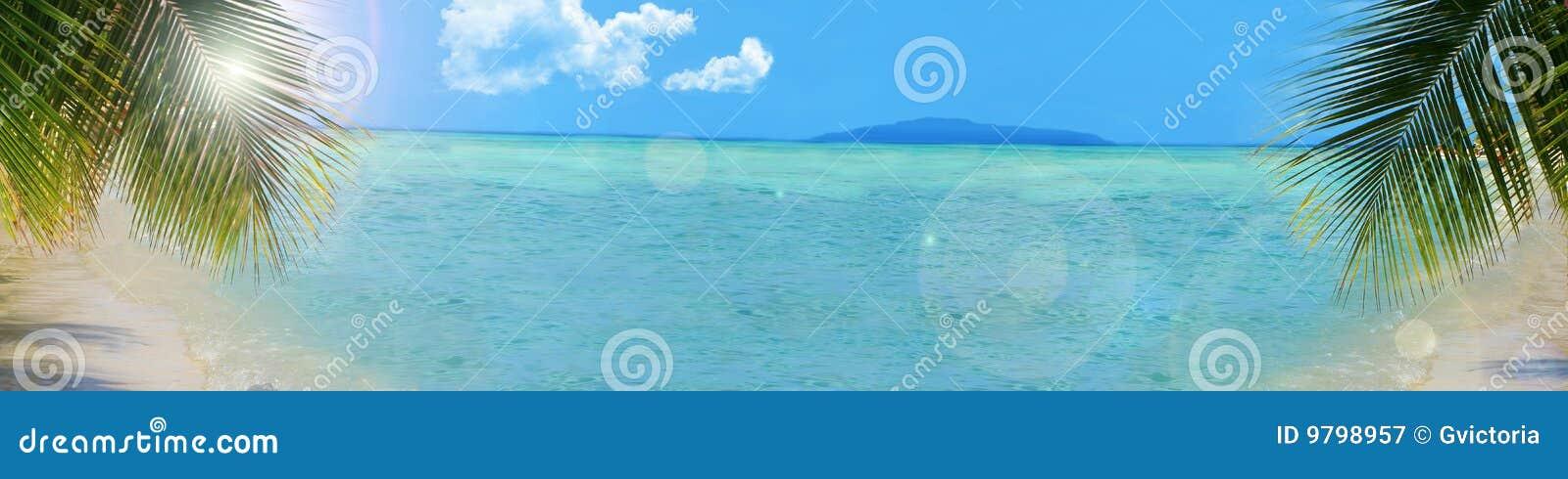 Tropisk bakgrundsbanerstrand