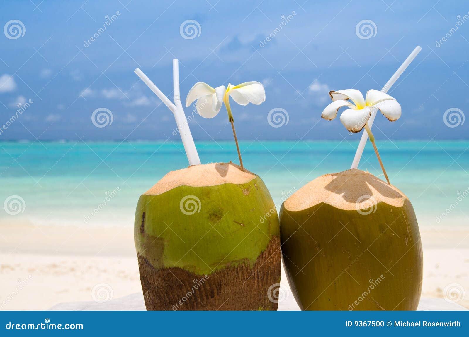 Tropisk coctailkokosnöt