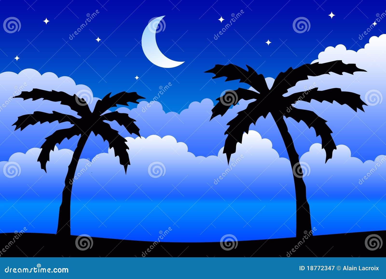 Tropisk natt