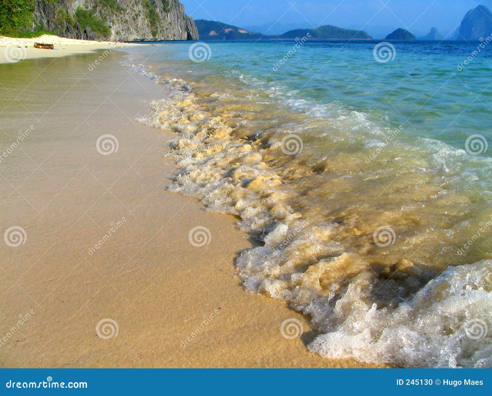 Tropisk oskuld för strand