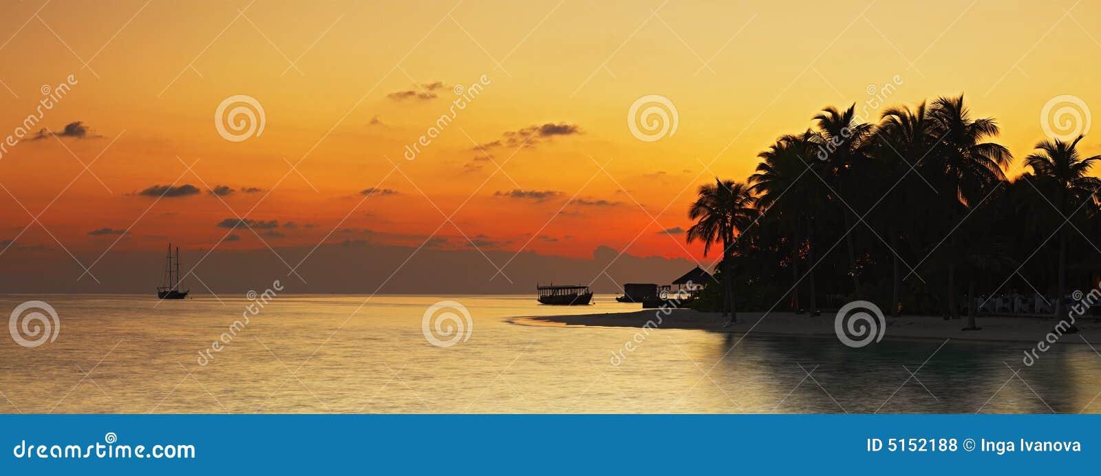 Tropisk panoramasolnedgång