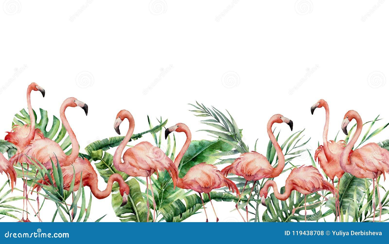 Tropisk sömlös gräns för vattenfärg med flamingo och exotiska sidor Hand målad blom- illustration med rosa fåglar