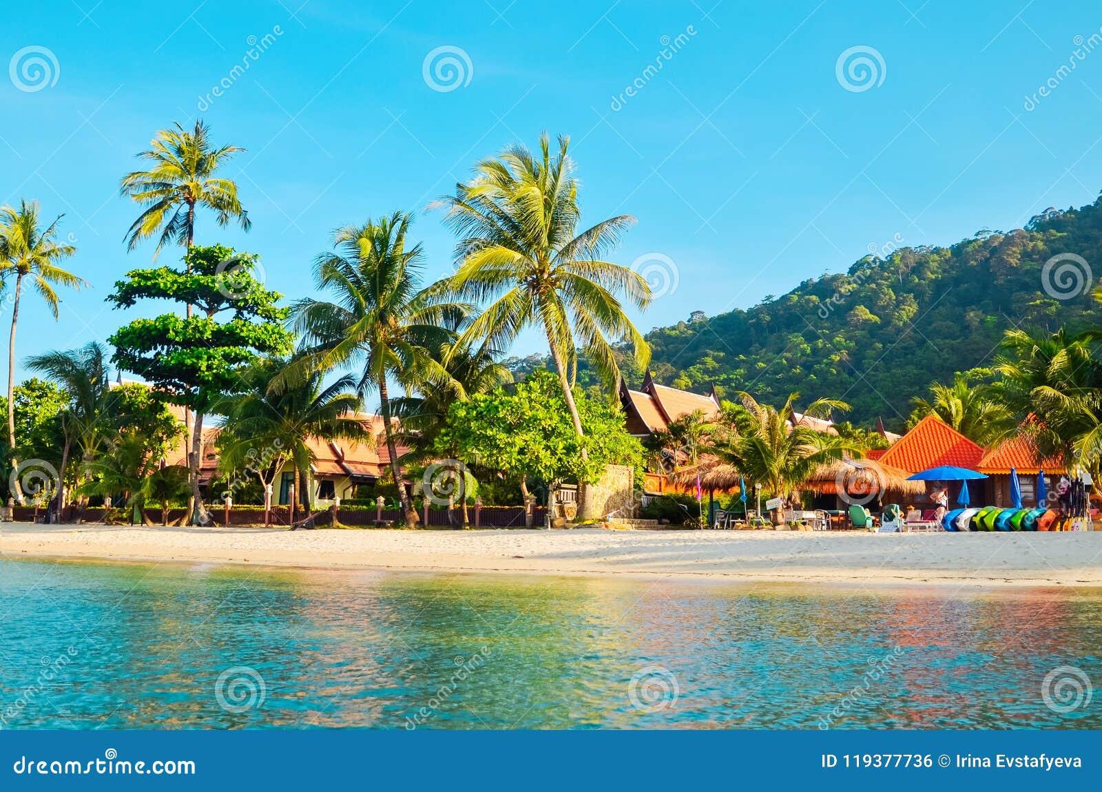 Tropisk sandig strand med palmträd och tropisk skogskytte från havet Thailand Koh Chang ö