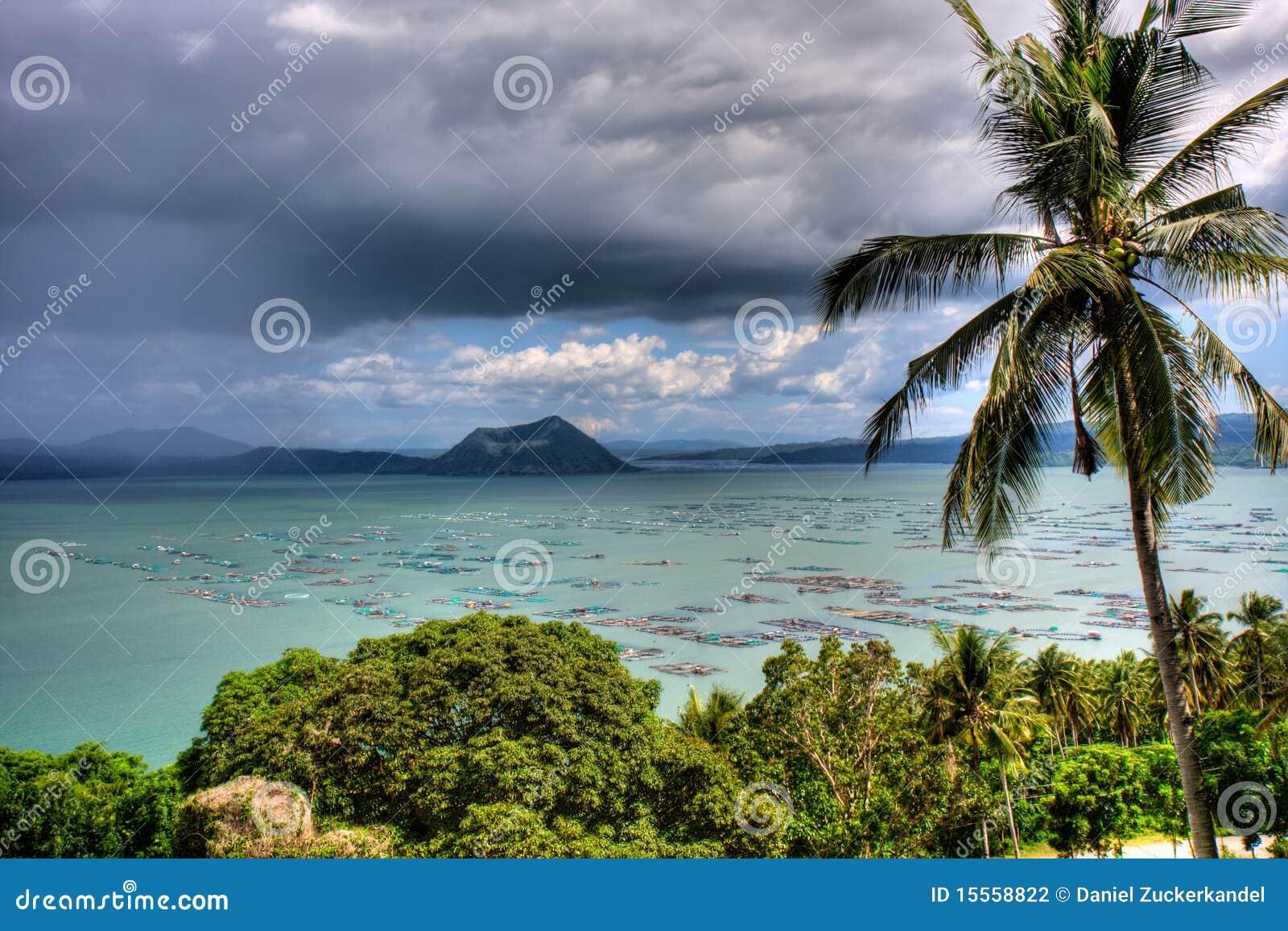 Tropisk sikt