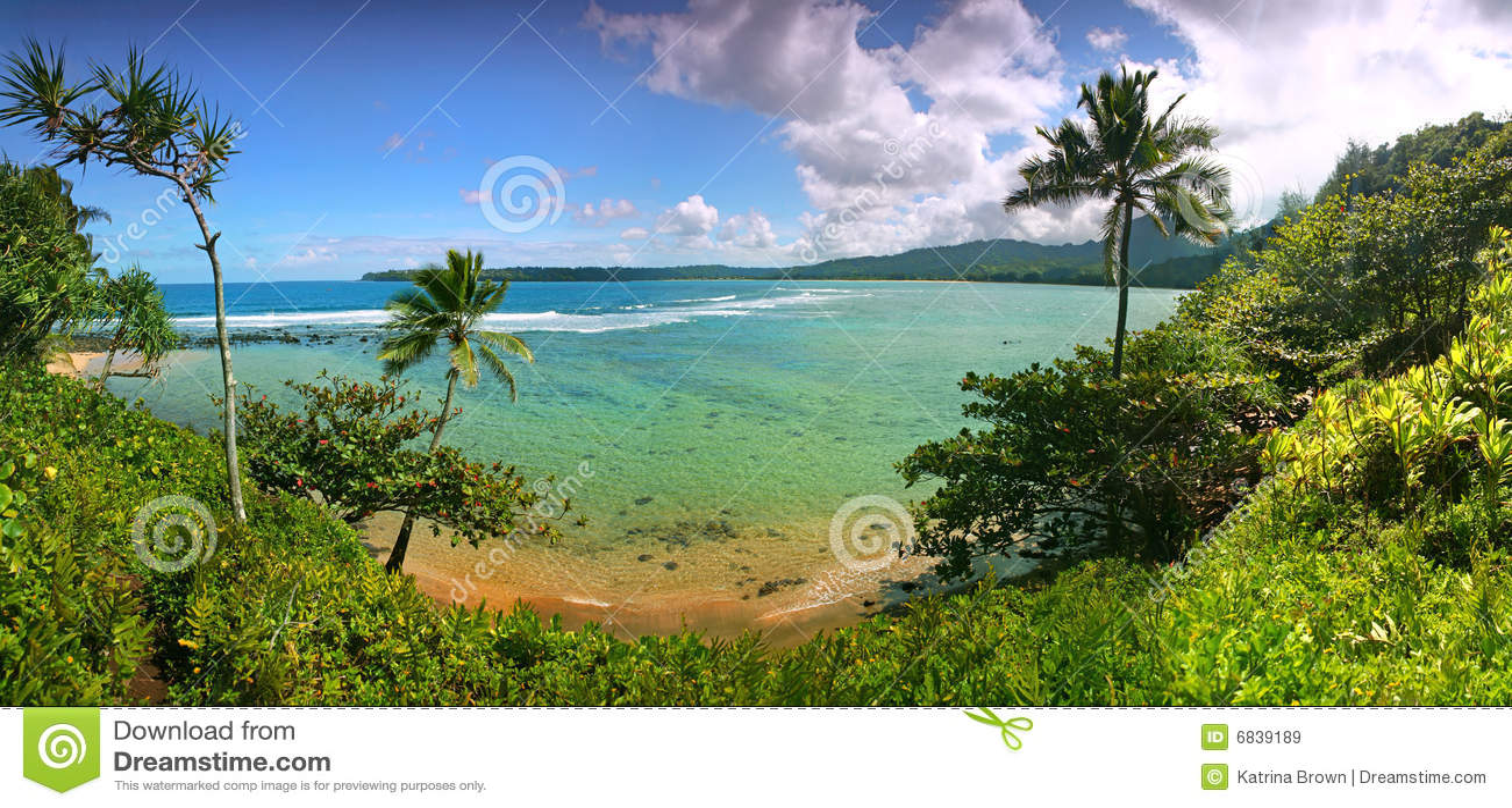 Tropisk sikt för hawaii kauai semesterort
