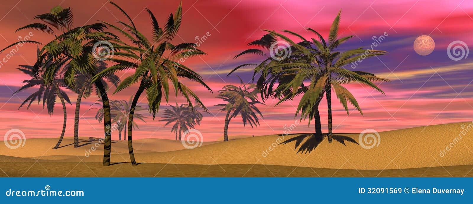 Tropisk solnedgång - 3D framför