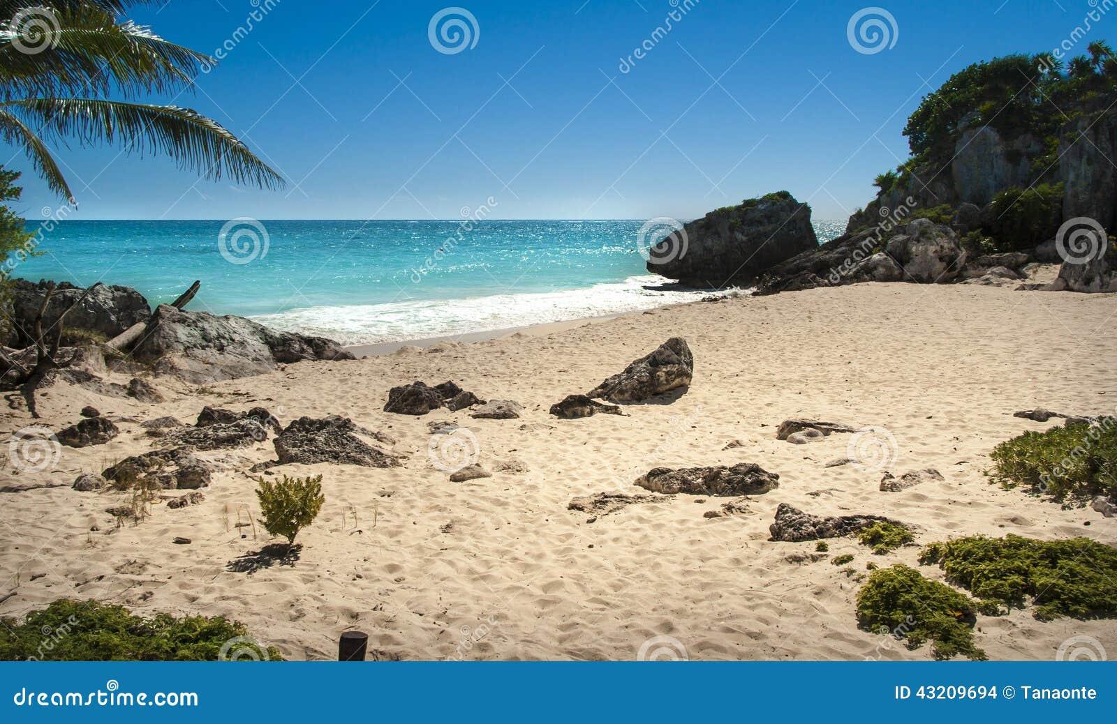 Download Tropisk strand arkivfoto. Bild av säsong, turism, himmel - 43209694