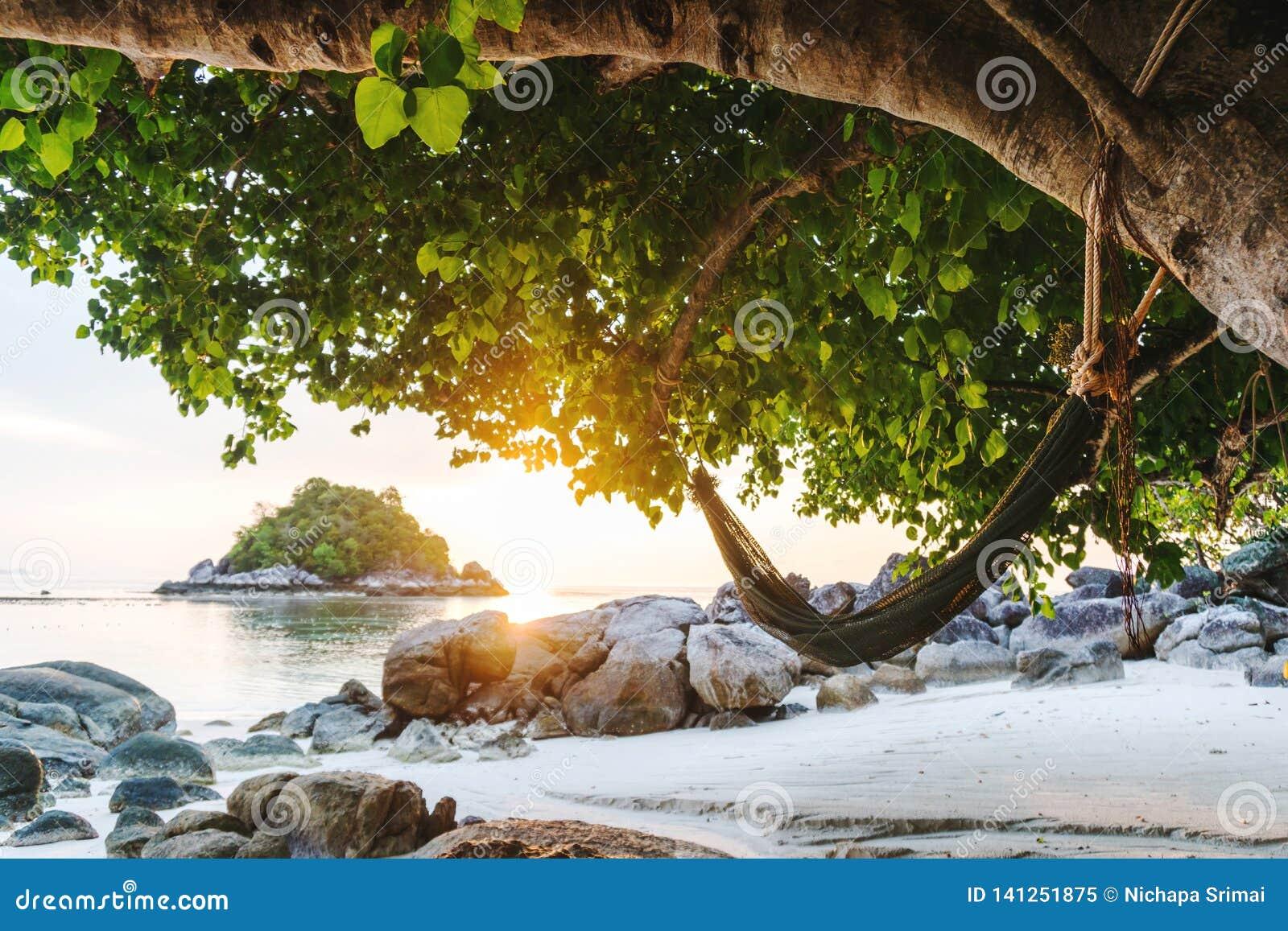 Tropisk strand och hängmatta i fritid- och koppla avbegrepp för sommar