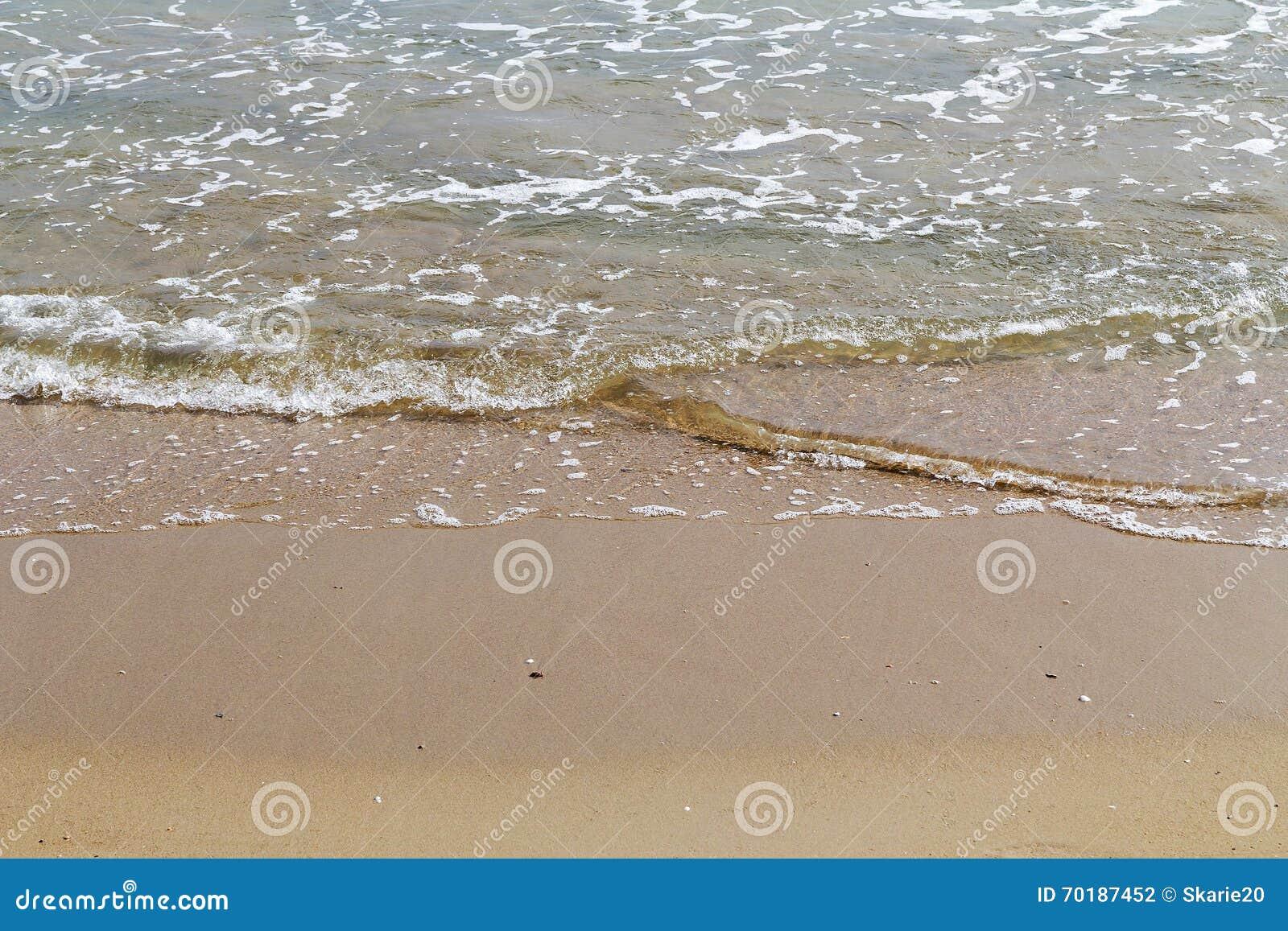 Tropisk strand och hav