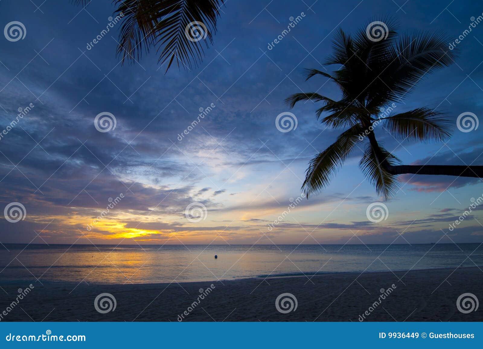 Tropisk strandsolnedgång