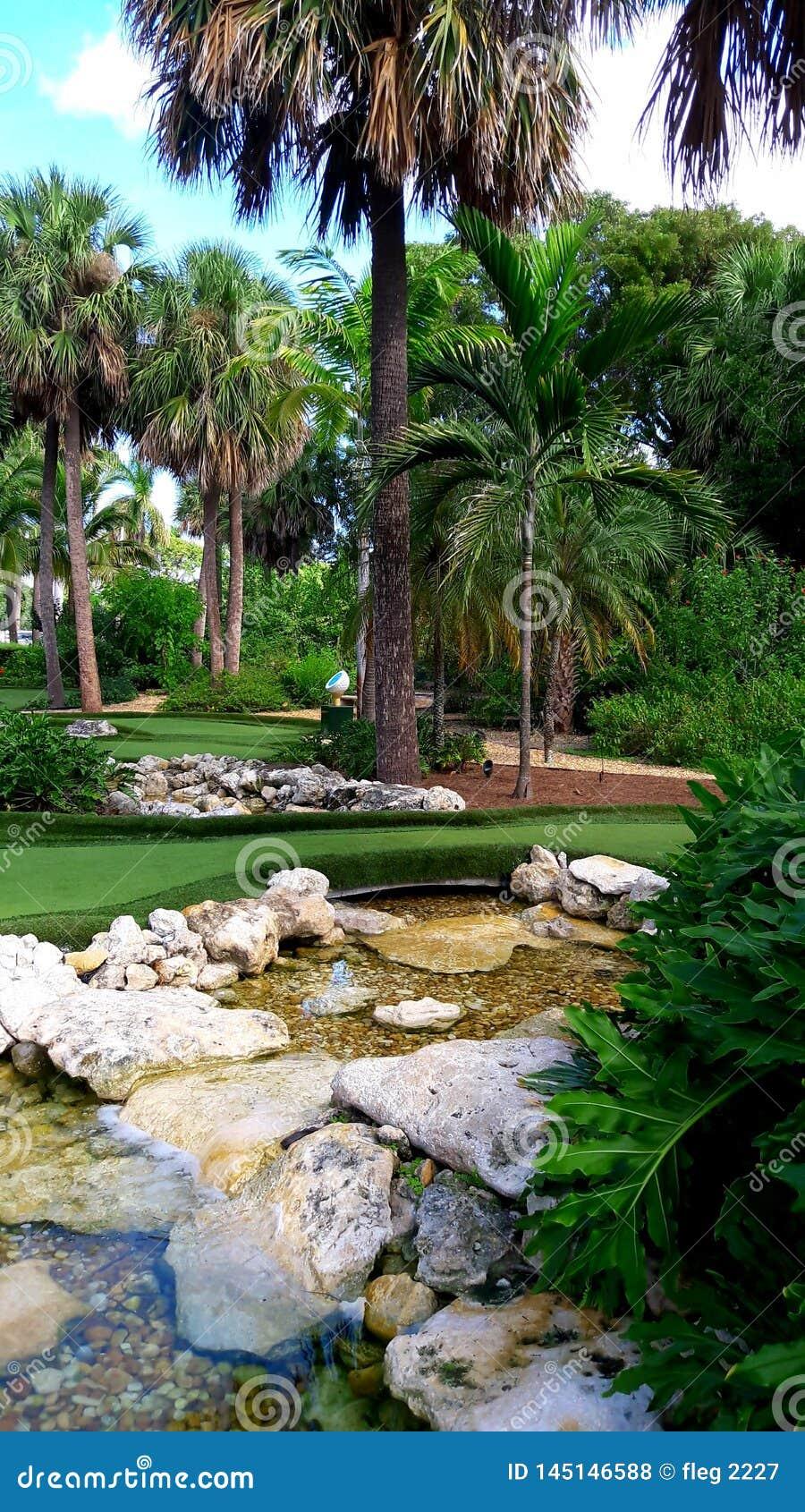 Tropisk trädgård- och minigolfkurs i Florida