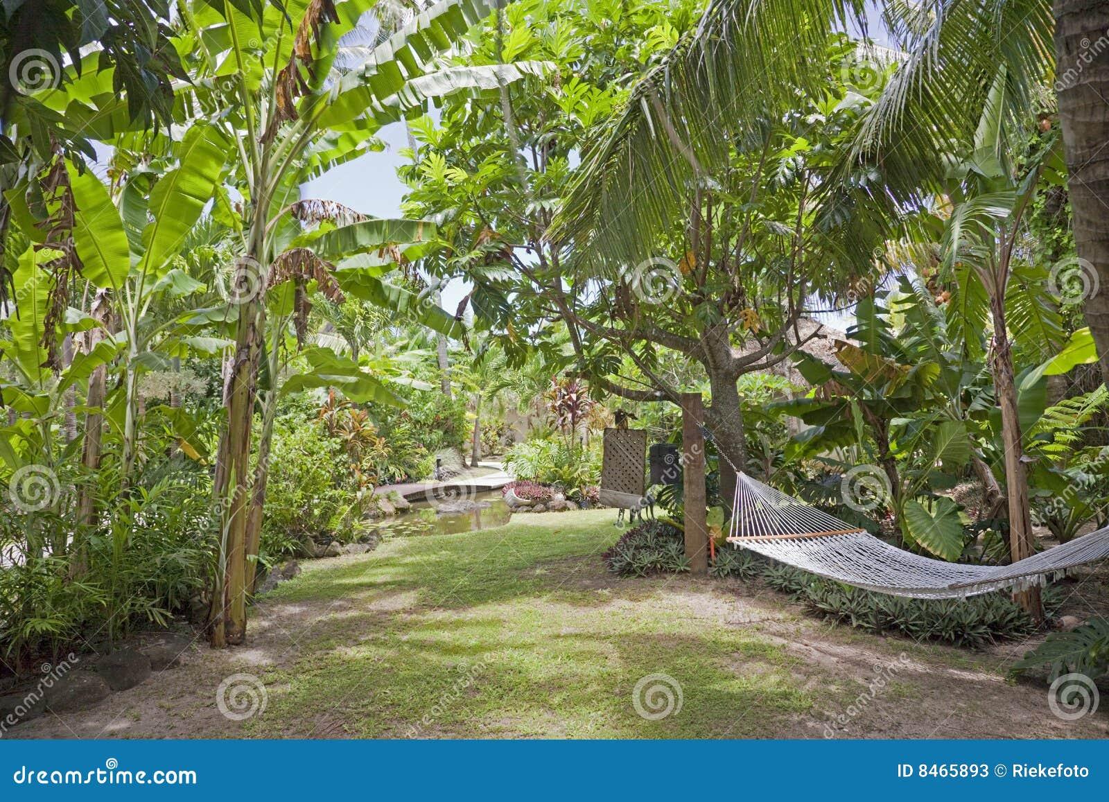 Tropisk trädgårds- hängmatta