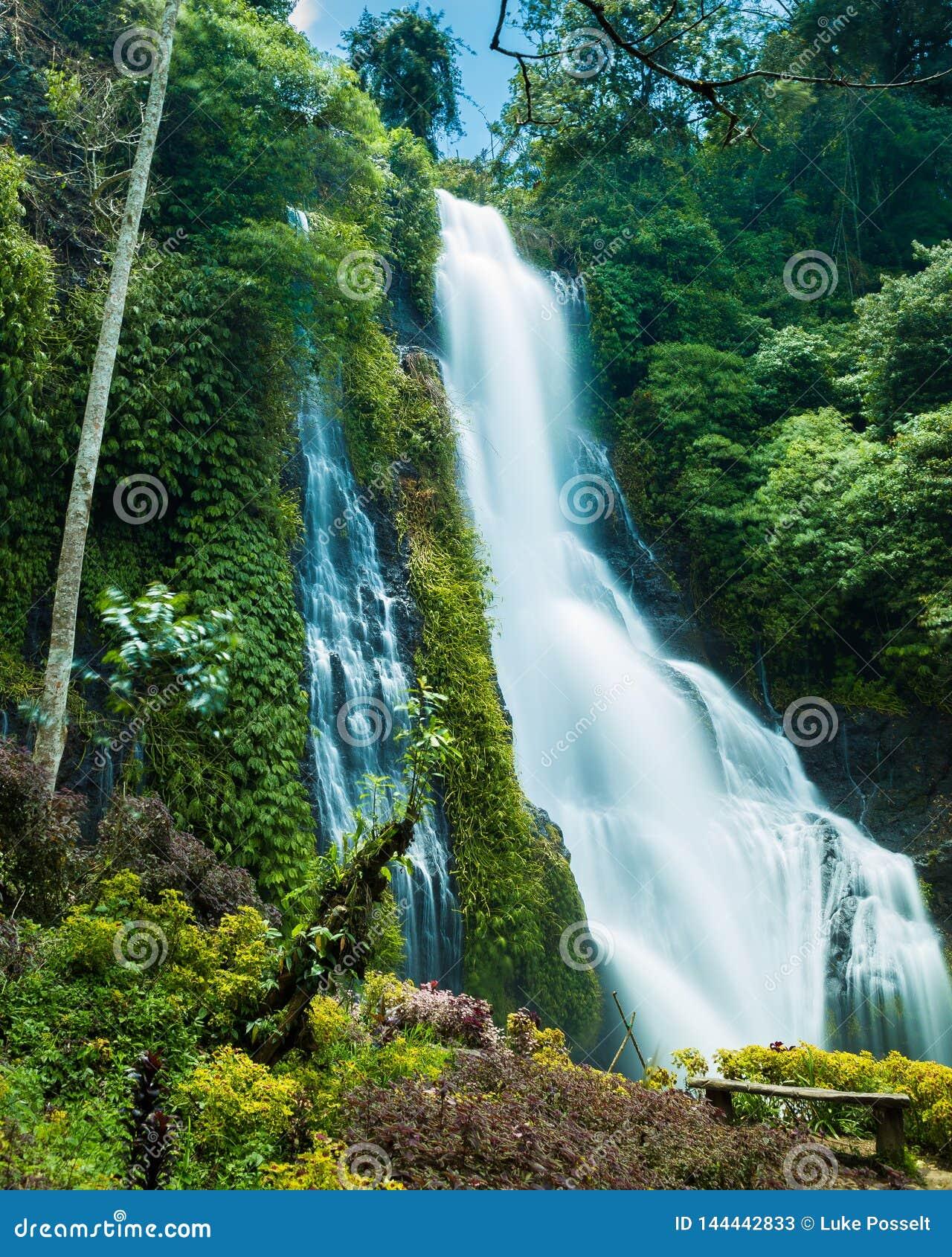 Tropisk vattenfall i indonesisk skog