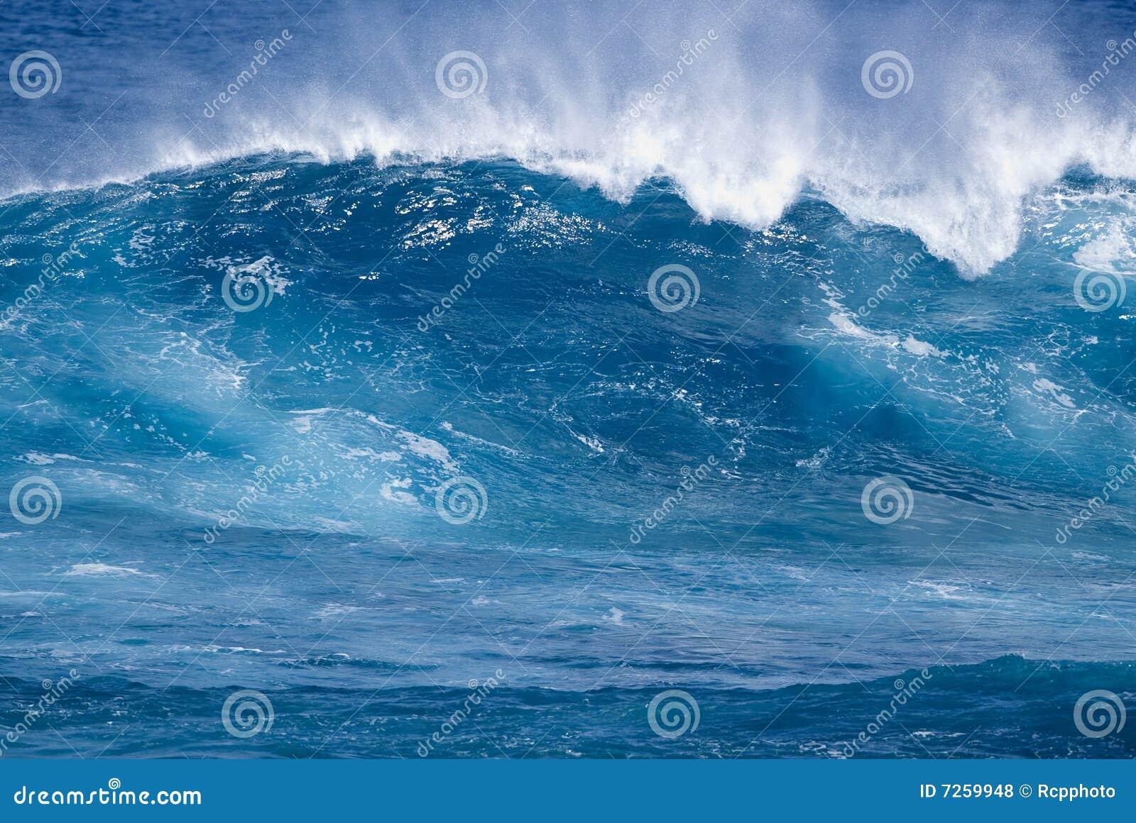 Tropisk wave