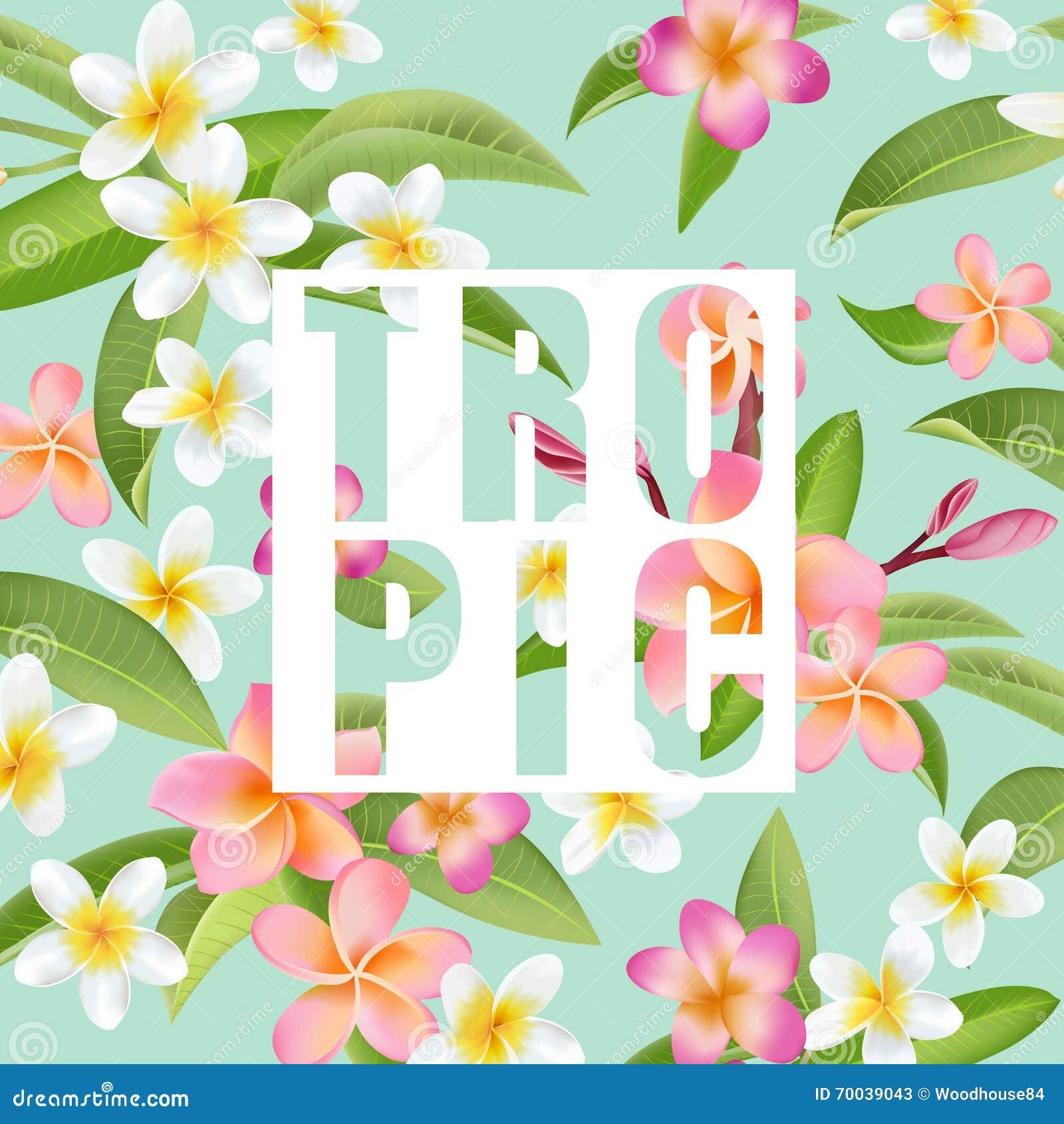 Tropiska blommaleaves exotisk bakgrund