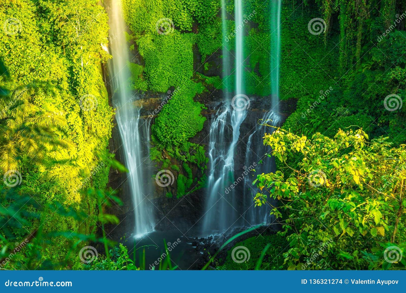 Tropiska Sekumpul vattenfall i den Bali ön, Indonesien