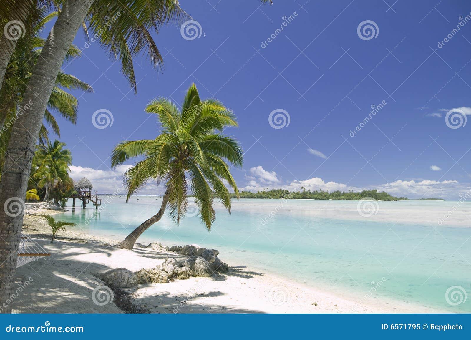 Tropiskt dröm- paradis för strand