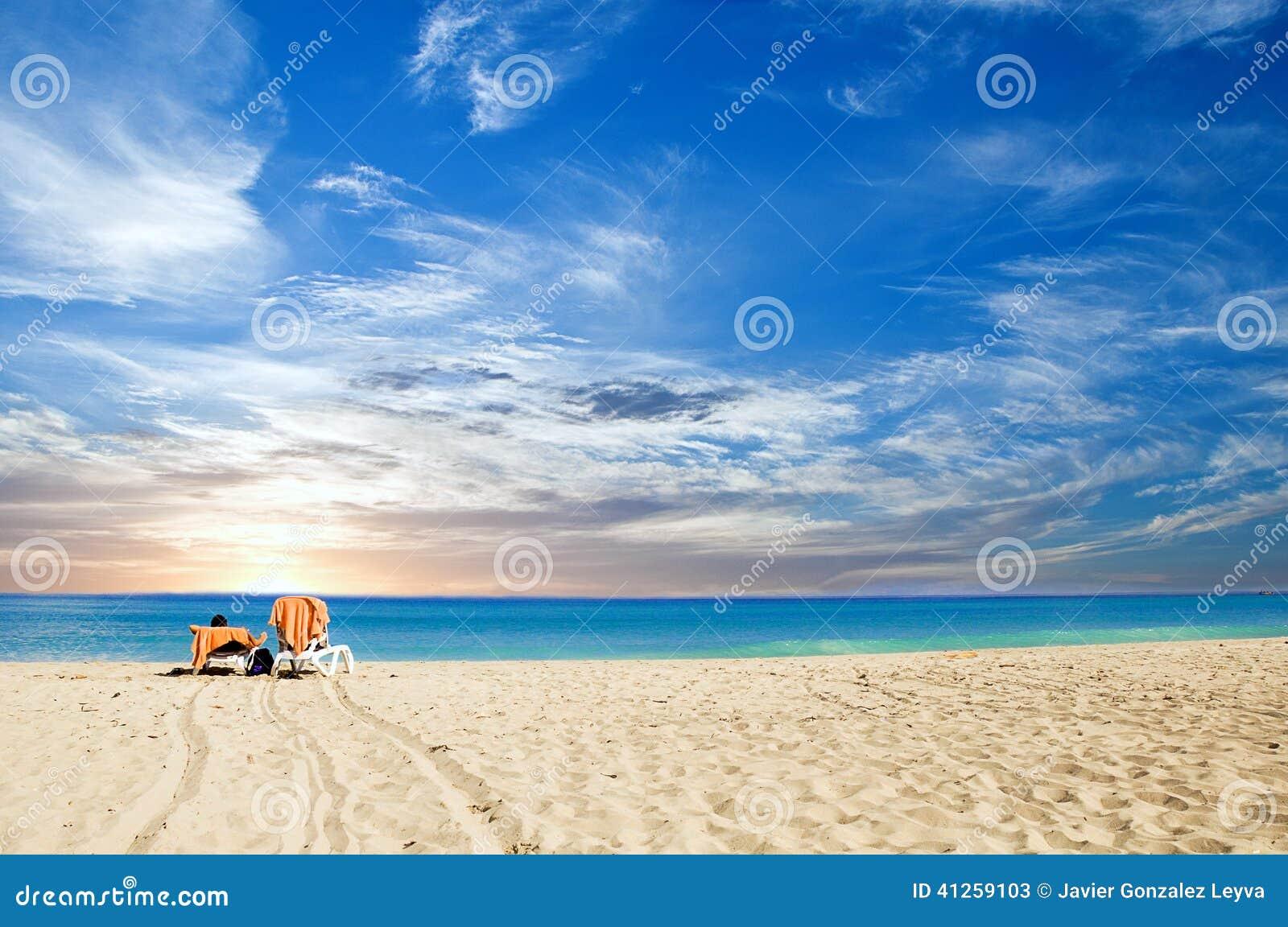 Tropiskt gry för strand