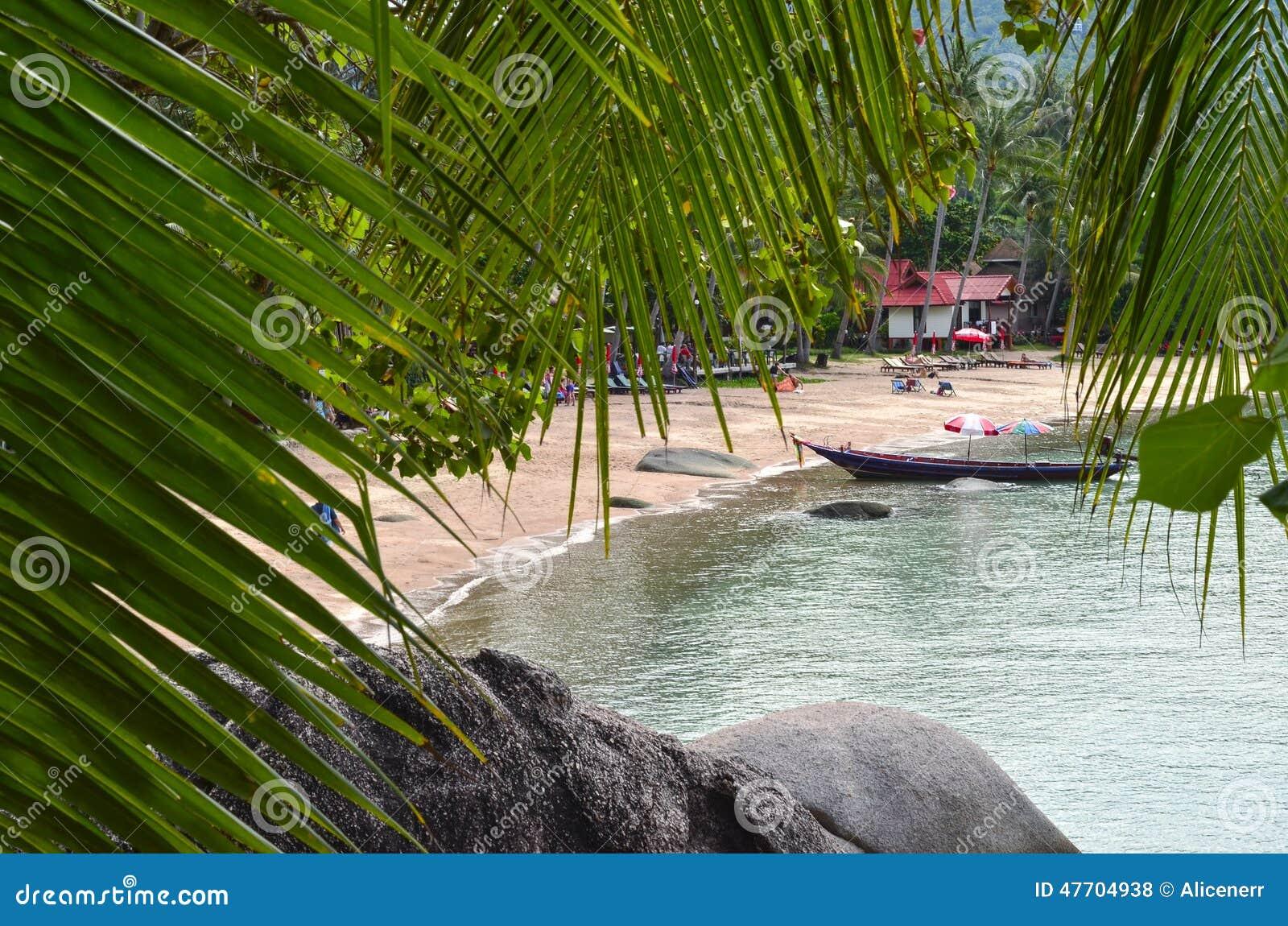 Tropiskt paradis - den sandiga stranden och longtailfartyget som behing, vaggar a