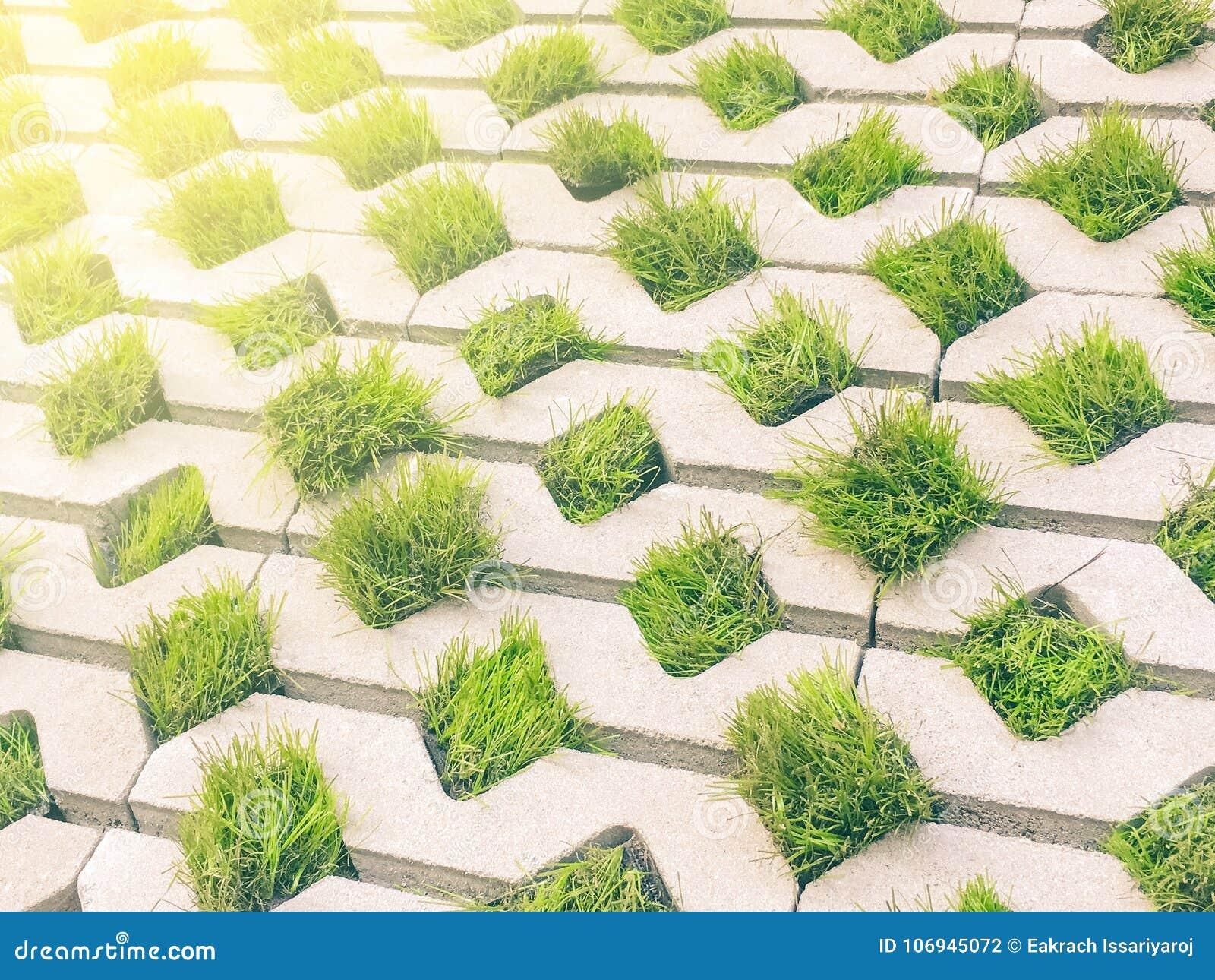 Dalle Beton Parking Herbe trottoir de modèle de feuille de bloc de béton et d'herbe