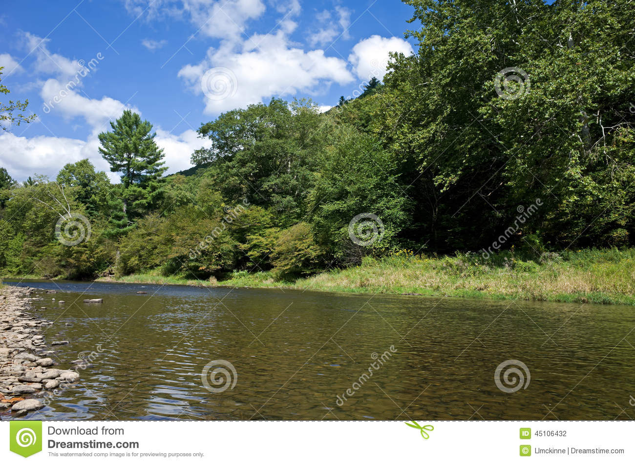 Trout fishing stock photo image 45106432 for Pa fishing license prices