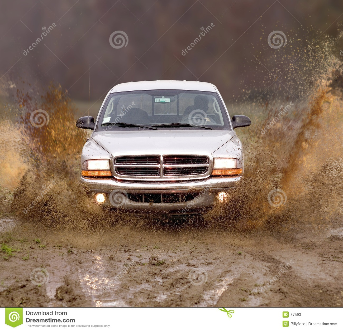 Truck in the mud