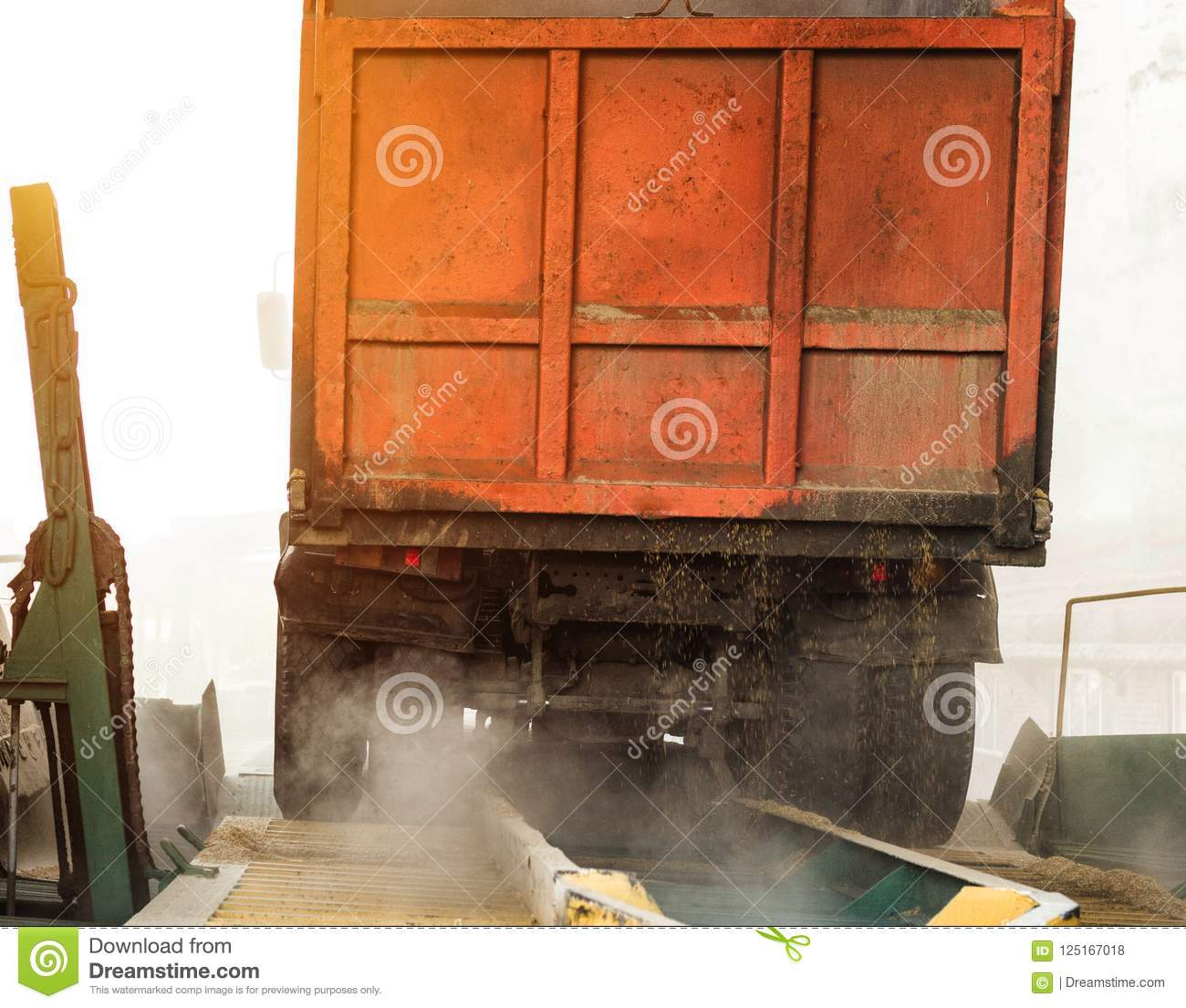 The Truck Unloads Grain At The Grain Storage And Processing Plant Corn Trailer Unload Seed Stock Photo Image Of Mill Breadstuff 125167018