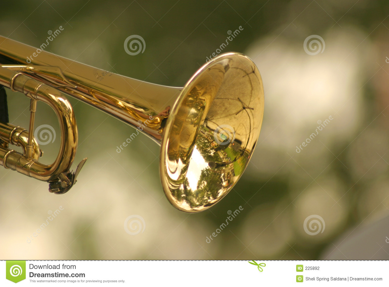 Download Trumpet stock photo. Image of trumpet, harmony, blow, slick - 225892
